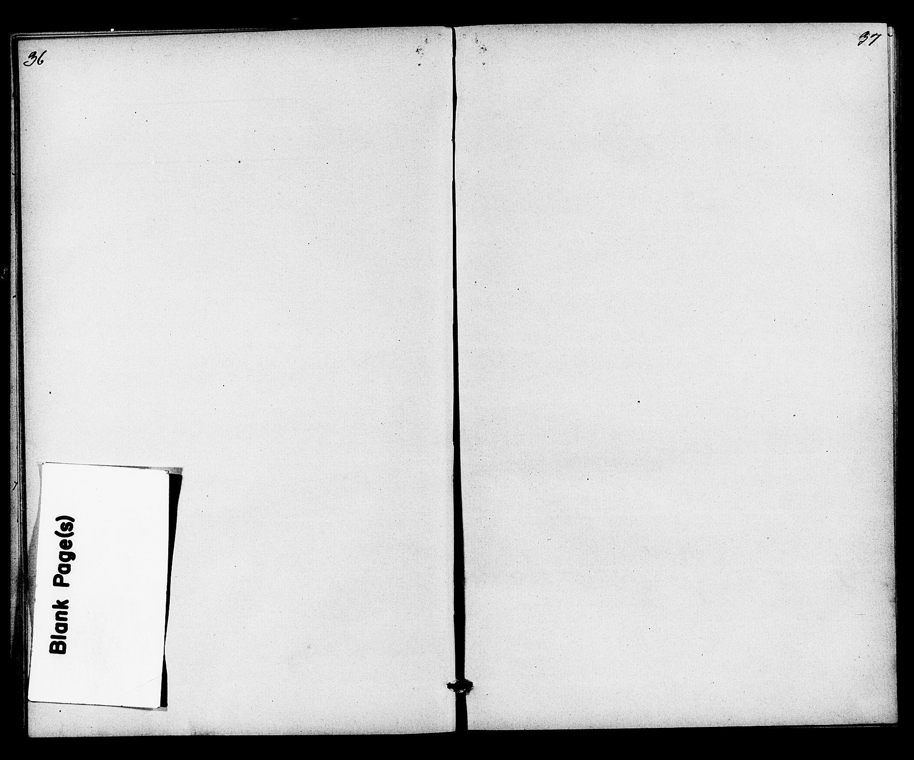 SAKO, Heddal kirkebøker, G/Gb/L0001: Klokkerbok nr. II 1, 1866-1887, s. 36-37