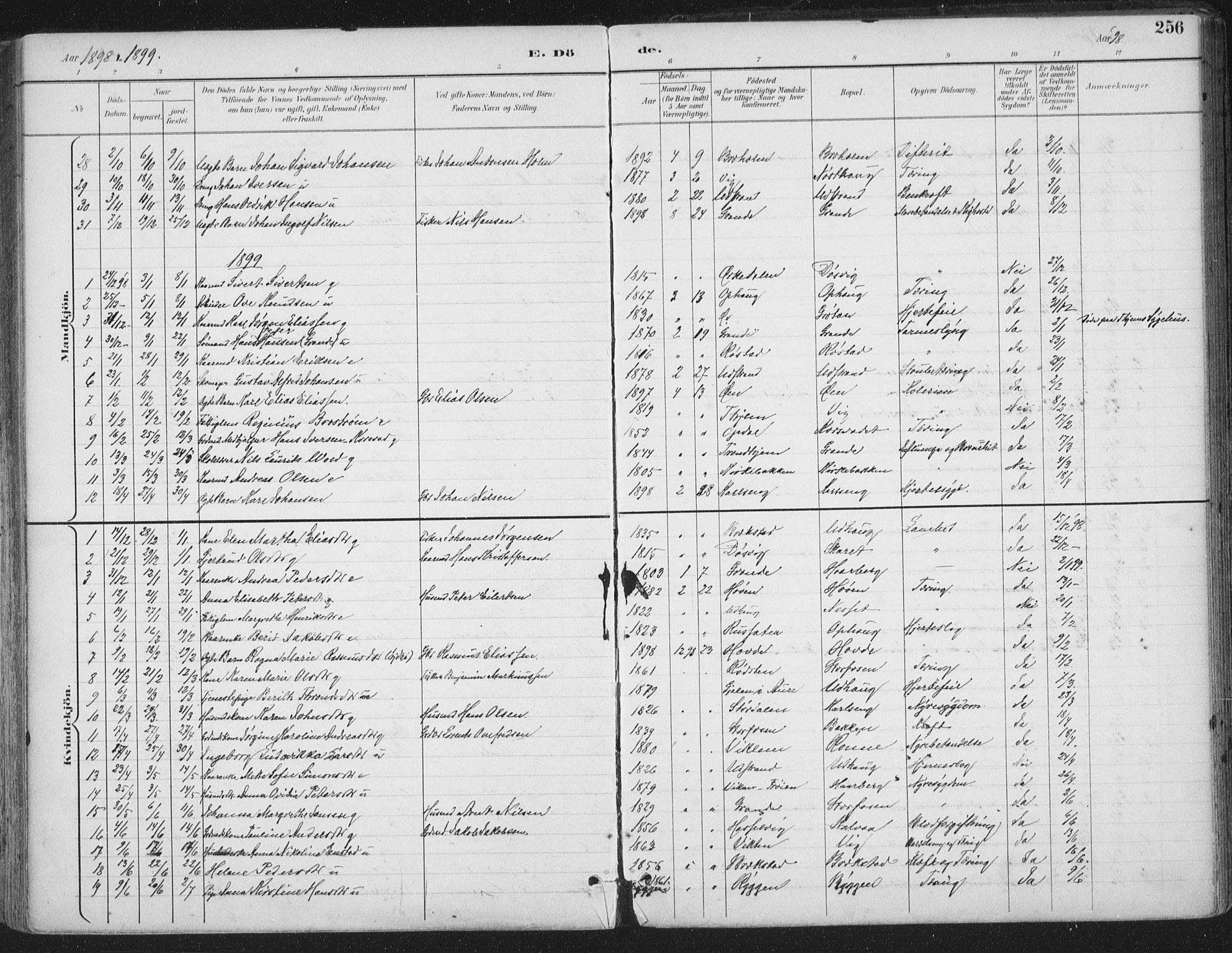SAT, Ministerialprotokoller, klokkerbøker og fødselsregistre - Sør-Trøndelag, 659/L0743: Ministerialbok nr. 659A13, 1893-1910, s. 256