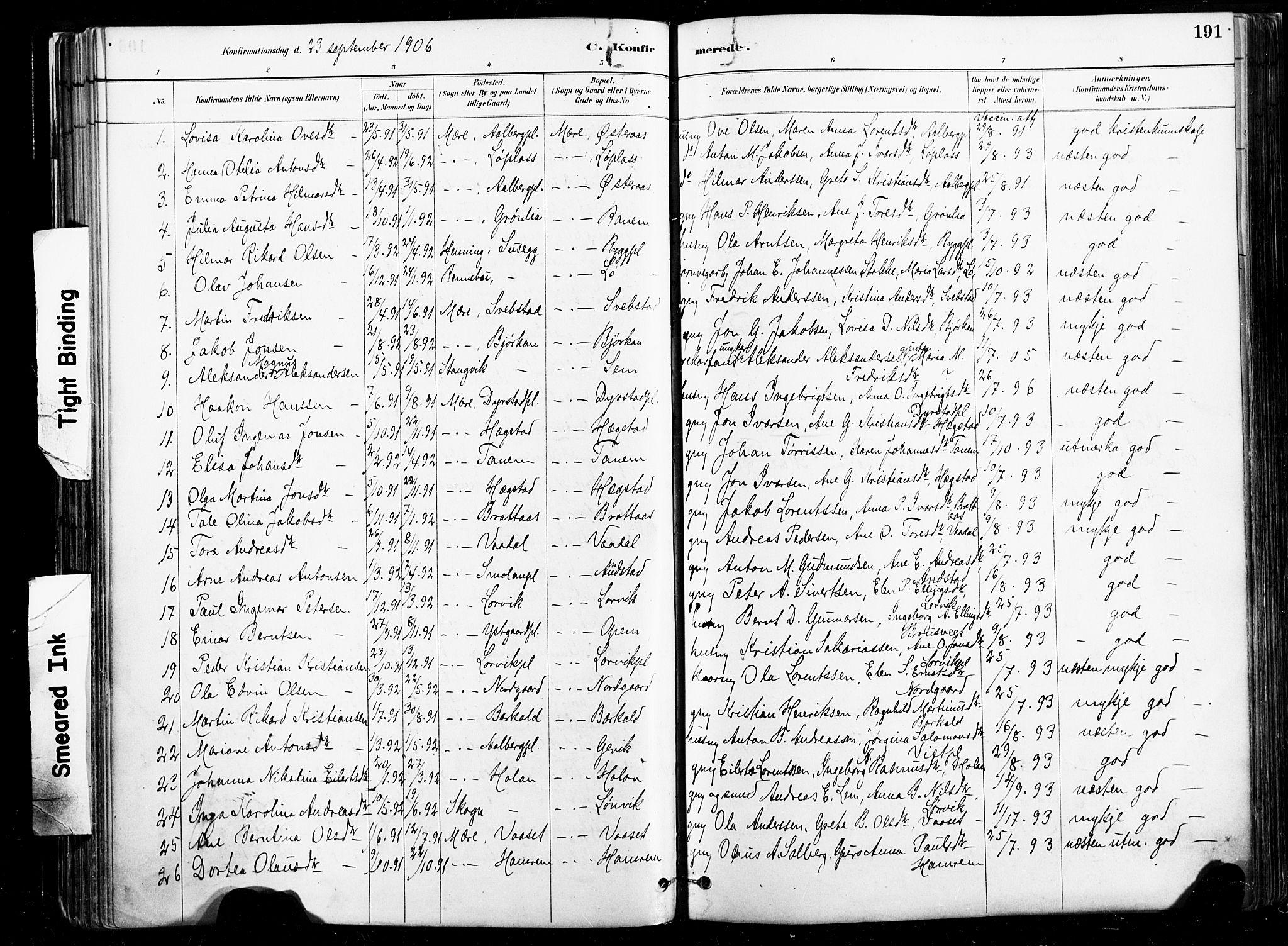 SAT, Ministerialprotokoller, klokkerbøker og fødselsregistre - Nord-Trøndelag, 735/L0351: Ministerialbok nr. 735A10, 1884-1908, s. 191