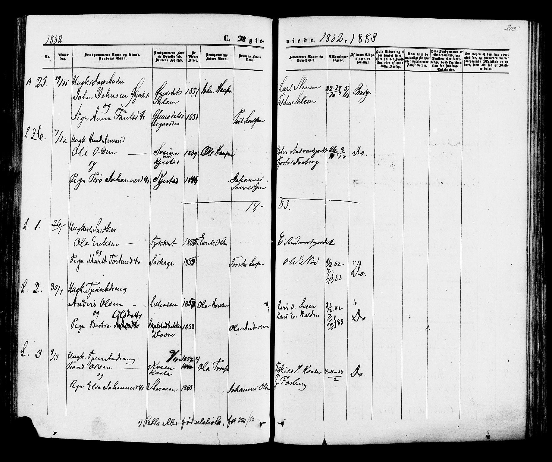 SAH, Lom prestekontor, K/L0007: Ministerialbok nr. 7, 1863-1884, s. 205