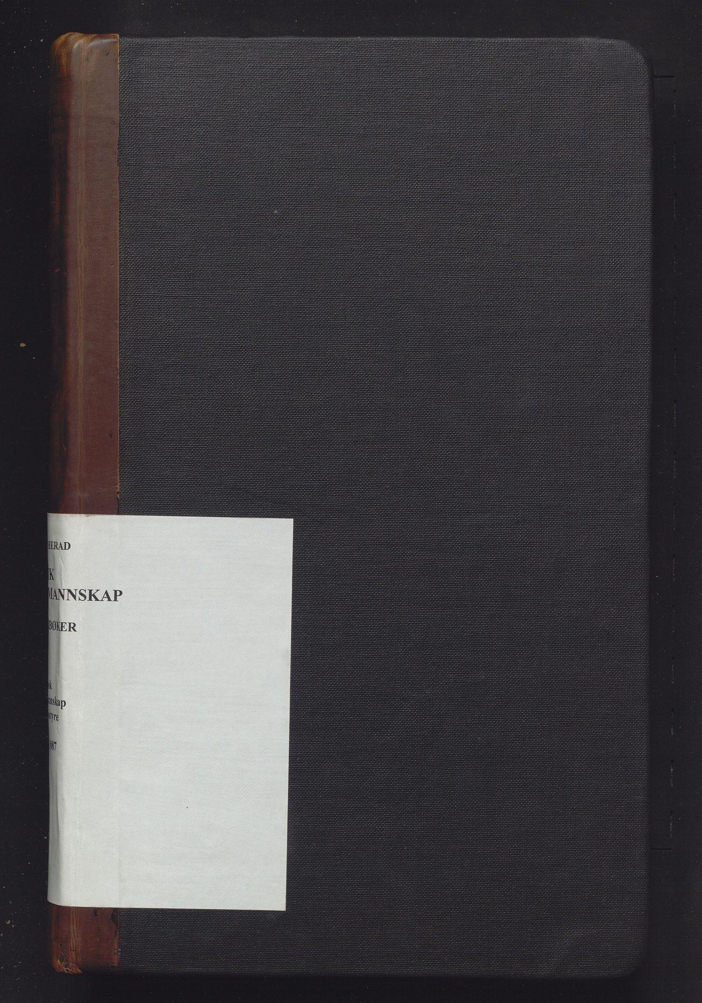 IKAH, Ulvik herad. Formannskapet, A/Aa/Aaa/L0003: Møtebok for formannskap, heradsstyre og soknestyra i Eidfjord, Graven og Ulvik soknekommunar, 1873-1887