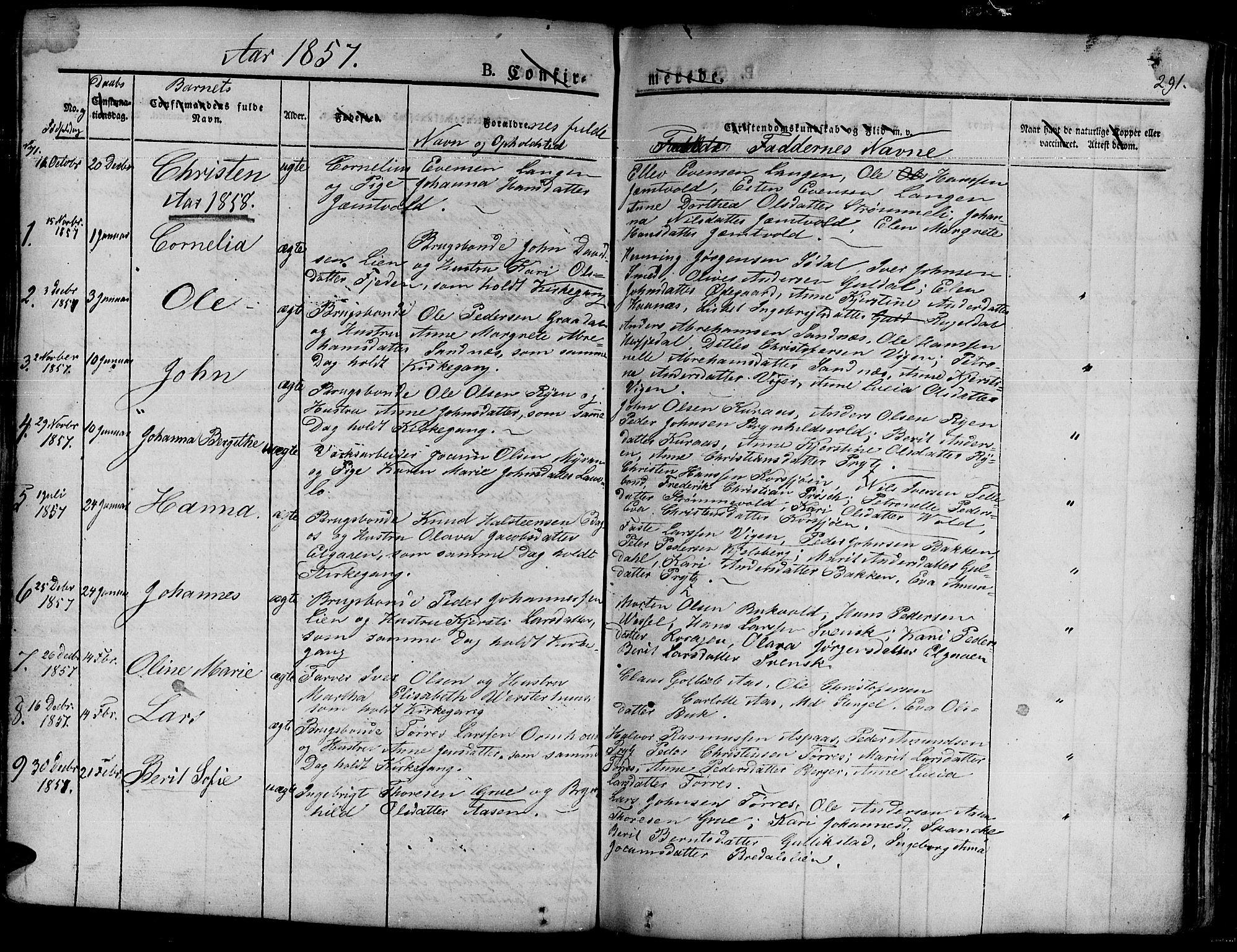 SAT, Ministerialprotokoller, klokkerbøker og fødselsregistre - Sør-Trøndelag, 681/L0938: Klokkerbok nr. 681C02, 1829-1879, s. 291