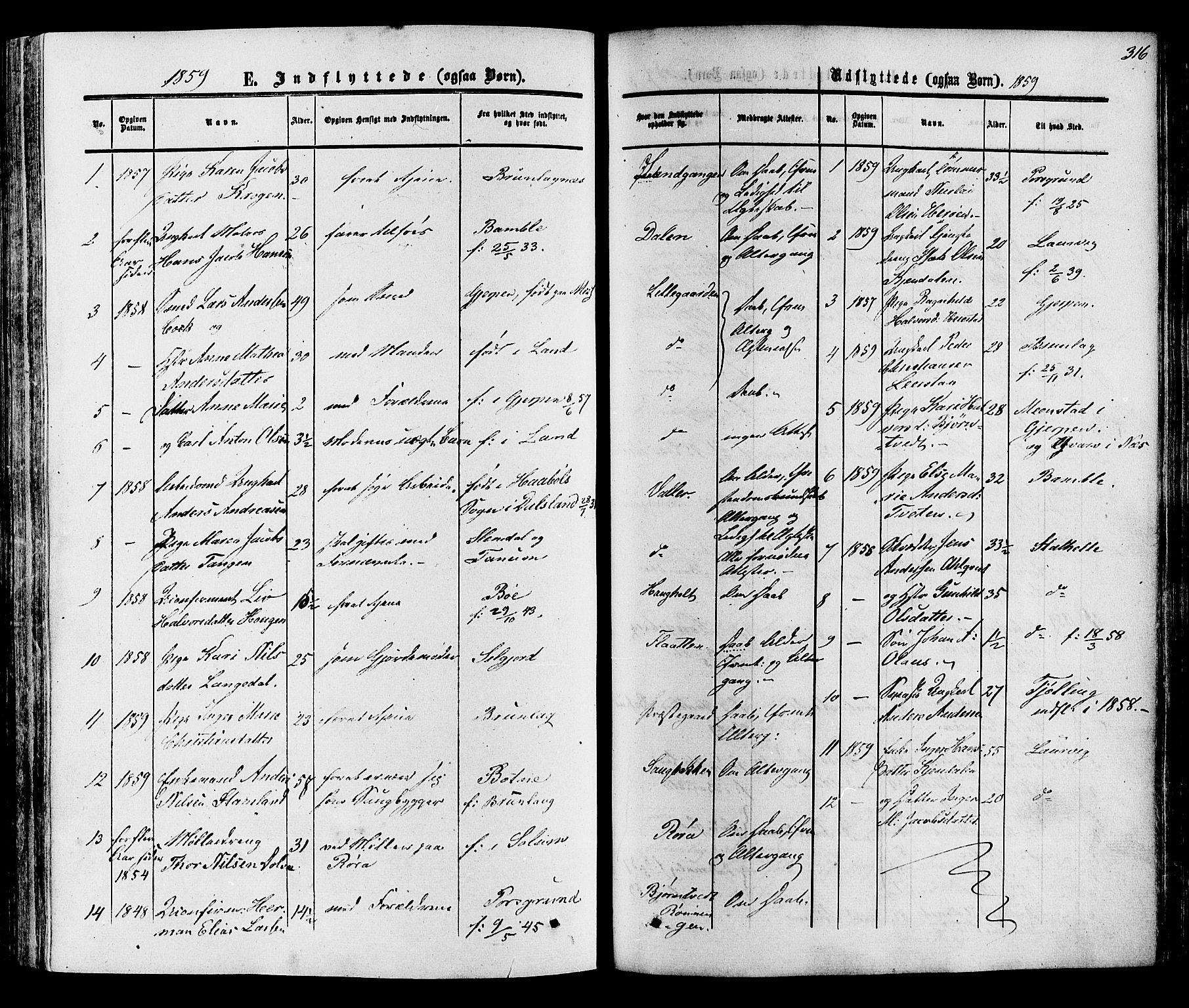 SAKO, Eidanger kirkebøker, F/Fa/L0010: Ministerialbok nr. 10, 1859-1874, s. 316