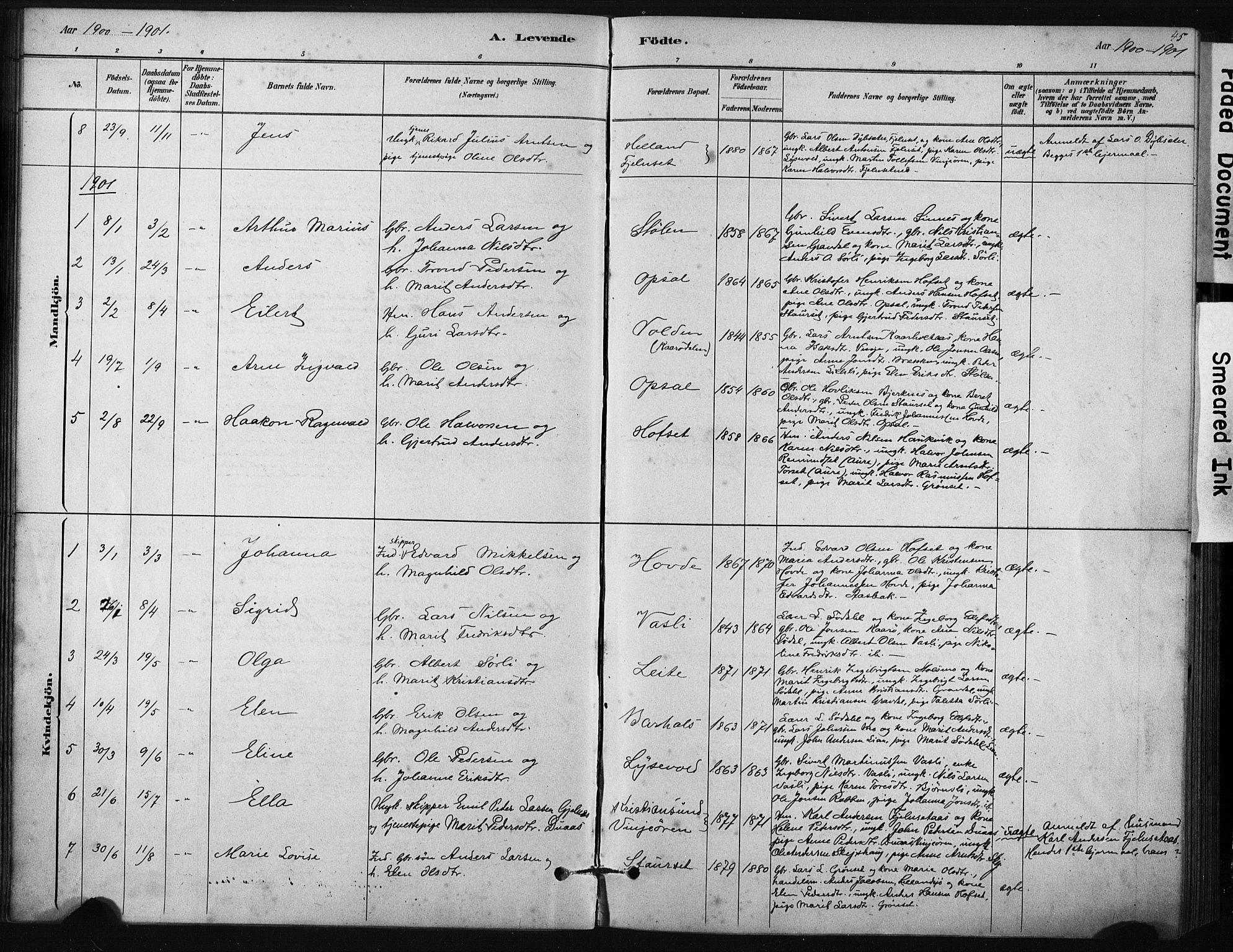SAT, Ministerialprotokoller, klokkerbøker og fødselsregistre - Sør-Trøndelag, 631/L0512: Ministerialbok nr. 631A01, 1879-1912, s. 45