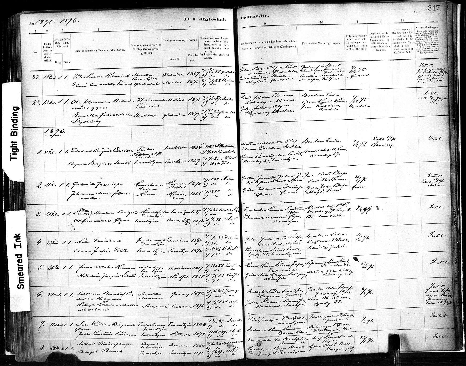 SAT, Ministerialprotokoller, klokkerbøker og fødselsregistre - Sør-Trøndelag, 602/L0119: Ministerialbok nr. 602A17, 1880-1901, s. 317