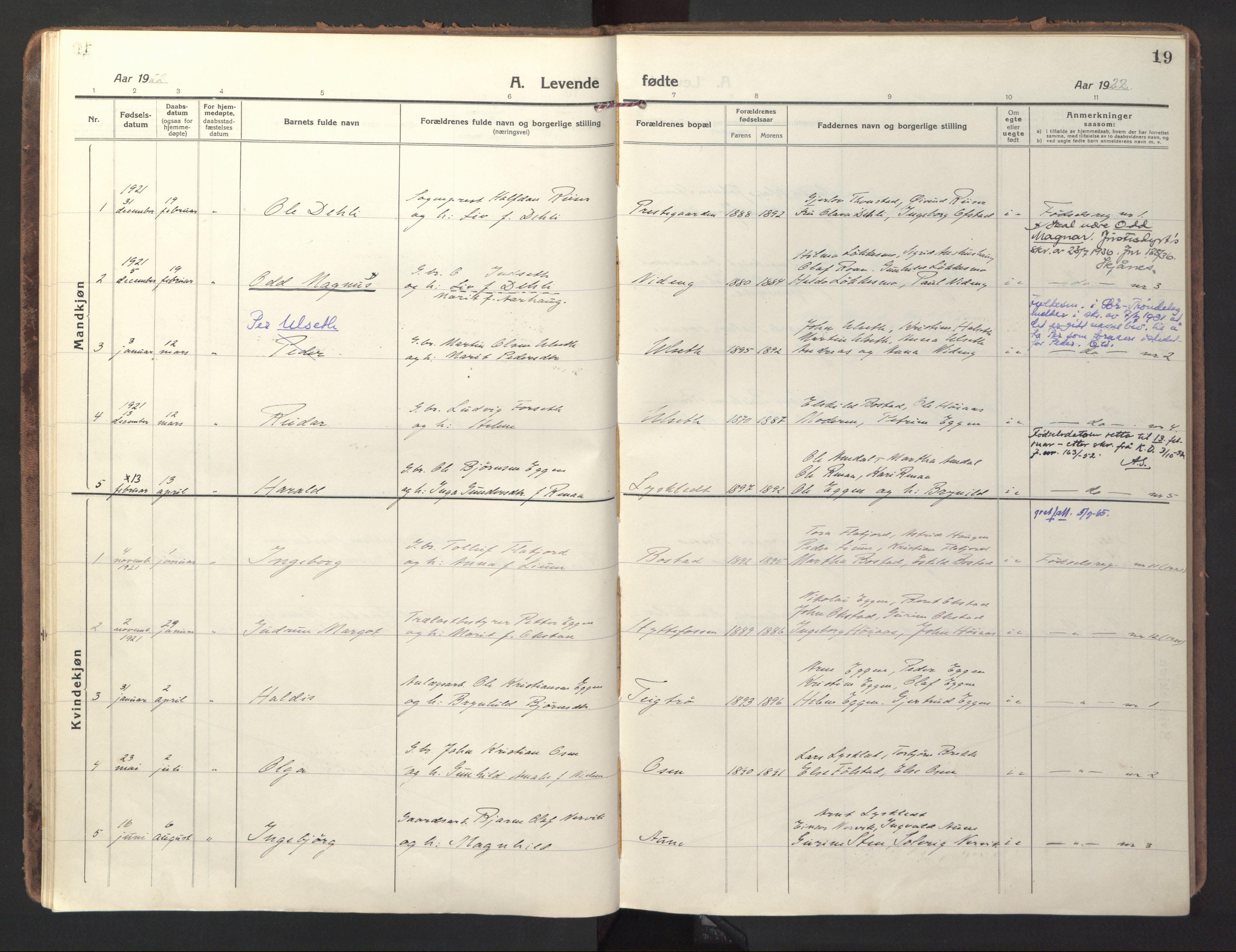 SAT, Ministerialprotokoller, klokkerbøker og fødselsregistre - Sør-Trøndelag, 618/L0449: Ministerialbok nr. 618A12, 1917-1924, s. 19