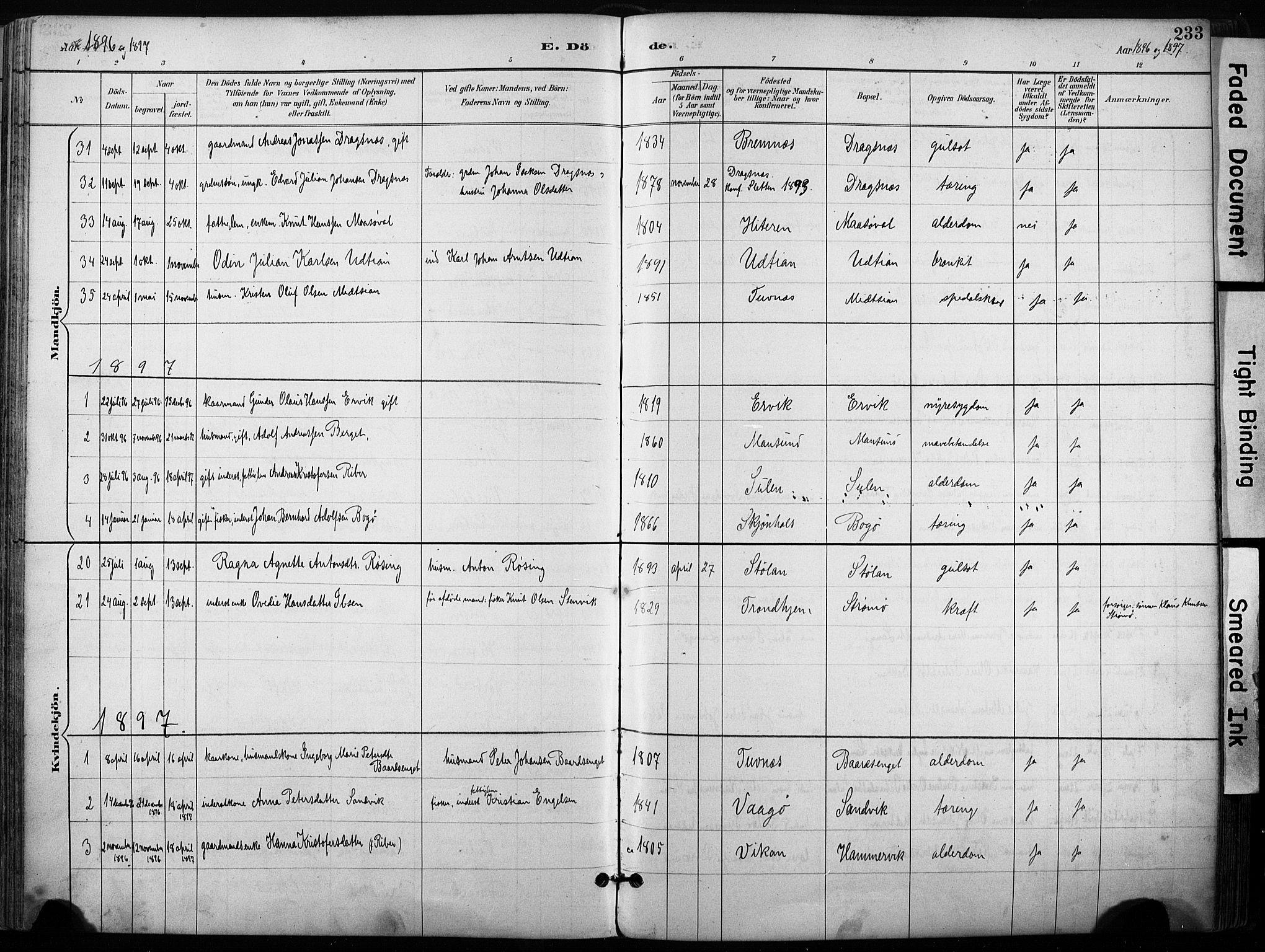 SAT, Ministerialprotokoller, klokkerbøker og fødselsregistre - Sør-Trøndelag, 640/L0579: Ministerialbok nr. 640A04, 1889-1902, s. 233