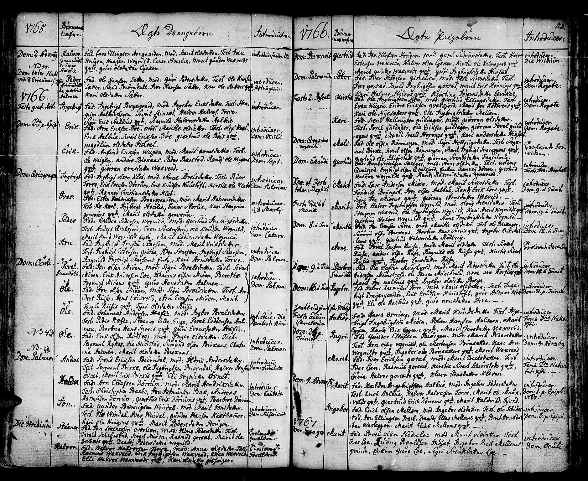 SAT, Ministerialprotokoller, klokkerbøker og fødselsregistre - Sør-Trøndelag, 678/L0891: Ministerialbok nr. 678A01, 1739-1780, s. 123