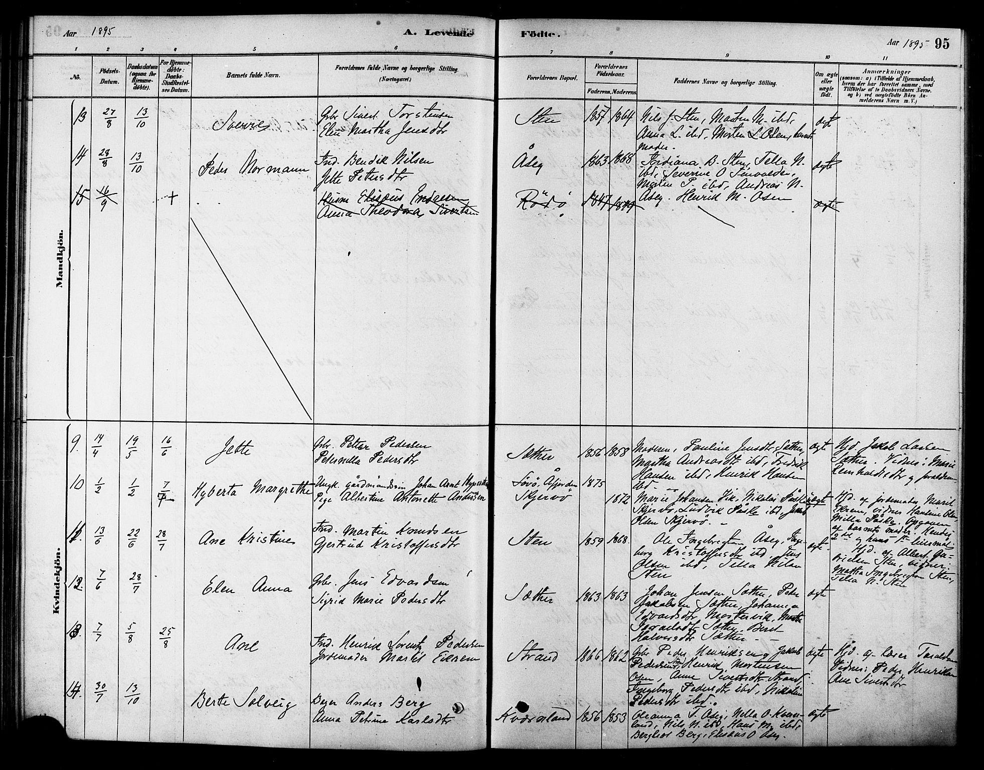 SAT, Ministerialprotokoller, klokkerbøker og fødselsregistre - Sør-Trøndelag, 658/L0722: Ministerialbok nr. 658A01, 1879-1896, s. 95