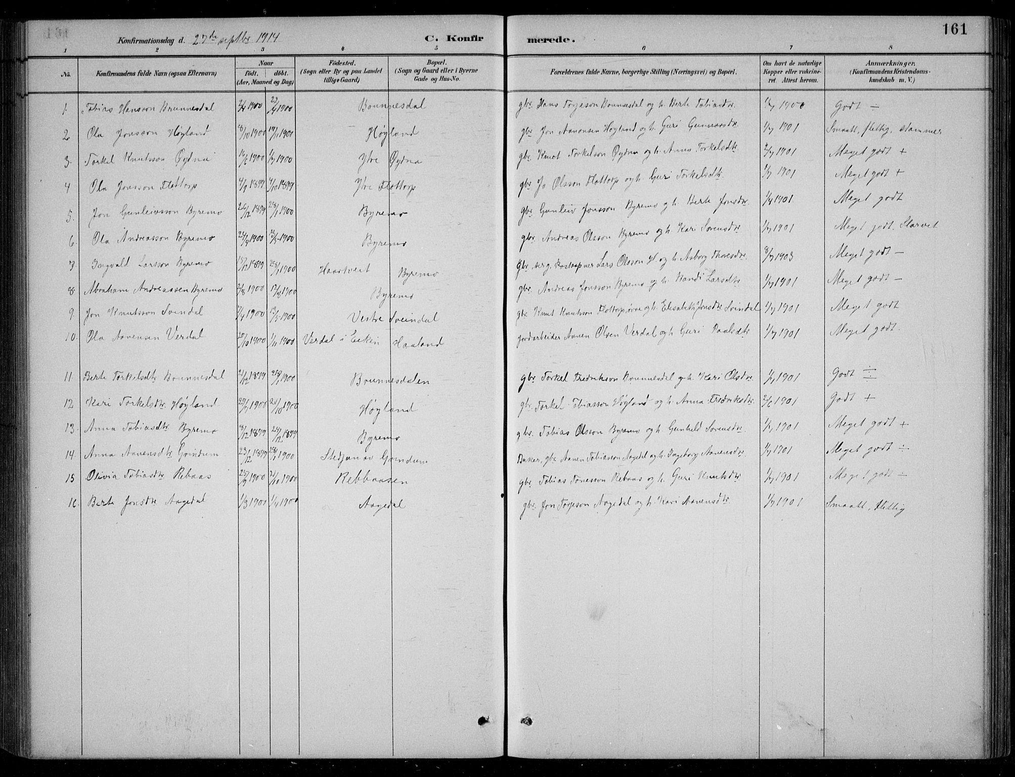 SAK, Bjelland sokneprestkontor, F/Fb/Fbc/L0003: Klokkerbok nr. B 3, 1887-1924, s. 161