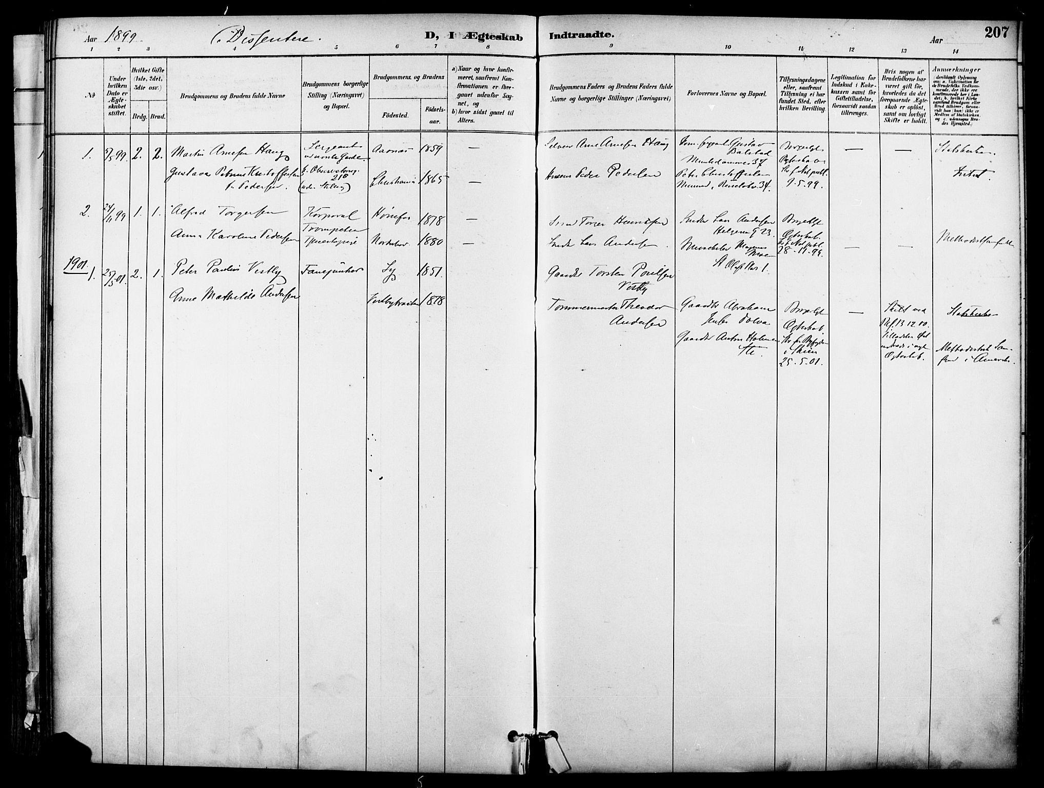 SAO, Garnisonsmenigheten Kirkebøker, F/Fa/L0013: Ministerialbok nr. 13, 1894-1904, s. 207