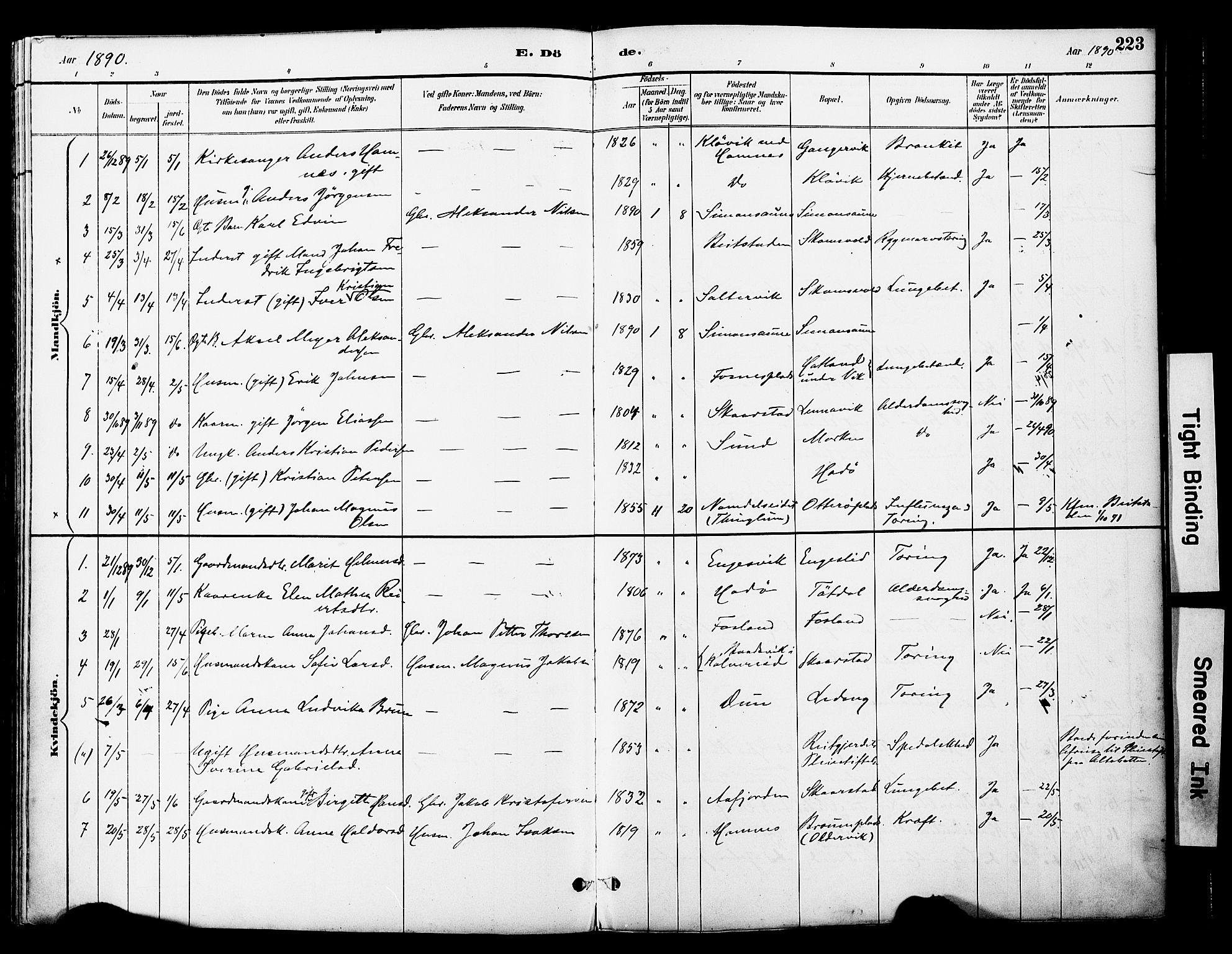 SAT, Ministerialprotokoller, klokkerbøker og fødselsregistre - Nord-Trøndelag, 774/L0628: Ministerialbok nr. 774A02, 1887-1903, s. 223