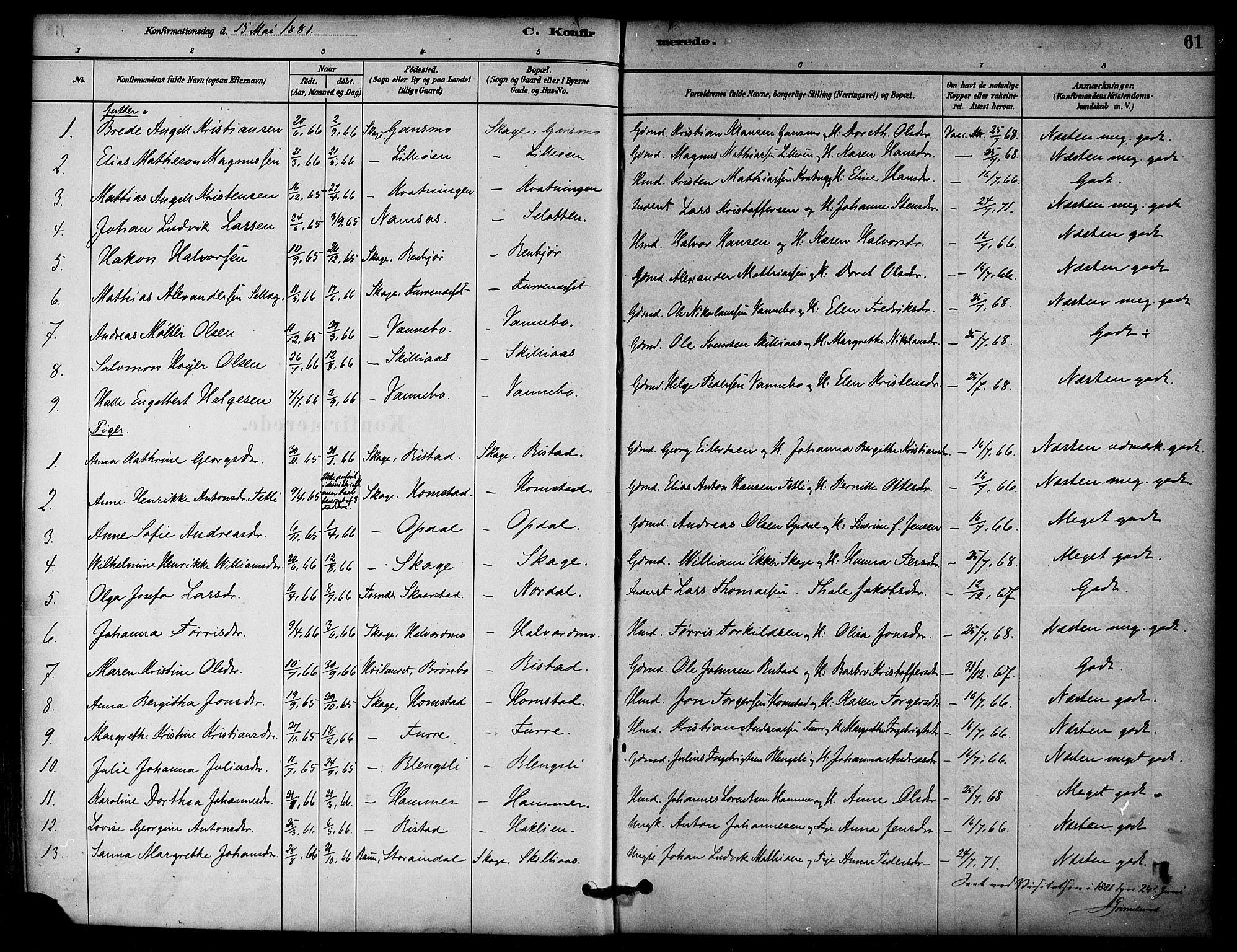 SAT, Ministerialprotokoller, klokkerbøker og fødselsregistre - Nord-Trøndelag, 766/L0563: Ministerialbok nr. 767A01, 1881-1899, s. 61