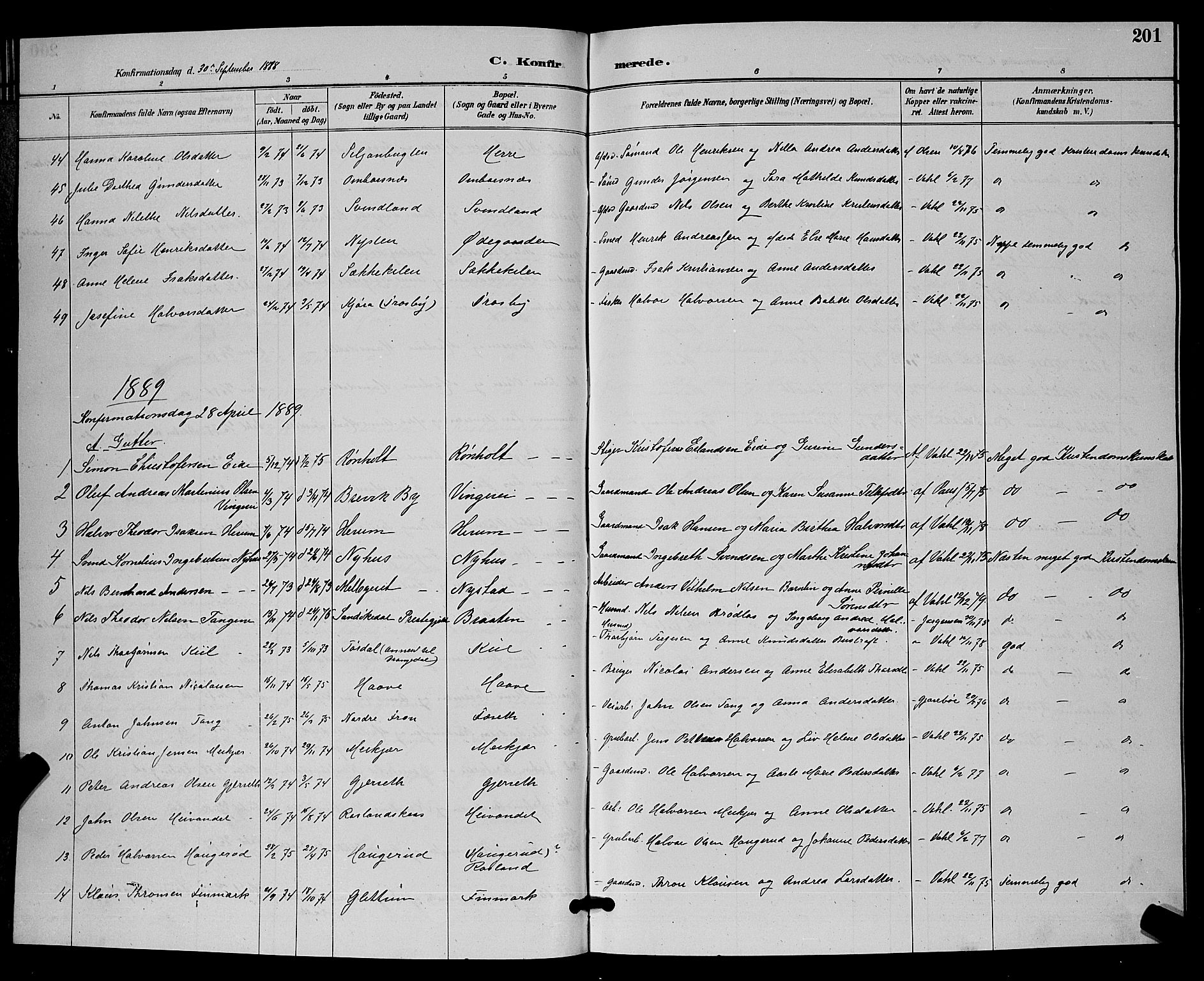 SAKO, Bamble kirkebøker, G/Ga/L0009: Klokkerbok nr. I 9, 1888-1900, s. 201