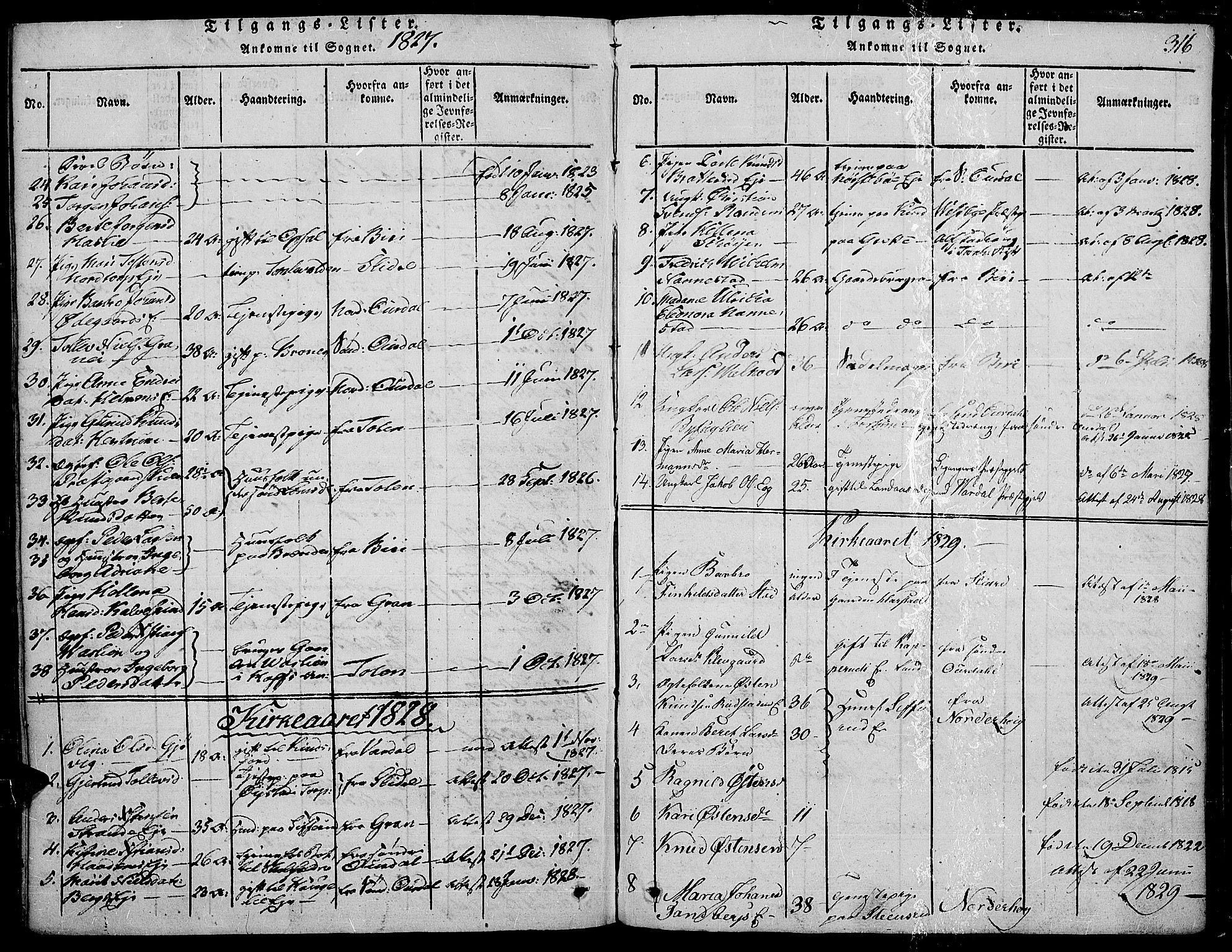 SAH, Land prestekontor, Ministerialbok nr. 7, 1814-1830, s. 316