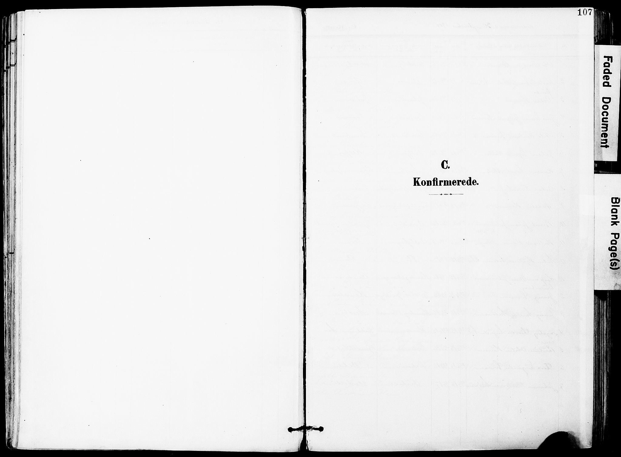 SAO, Vestby prestekontor Kirkebøker, F/Fa/L0010: Ministerialbok nr. I 10, 1900-1926, s. 107