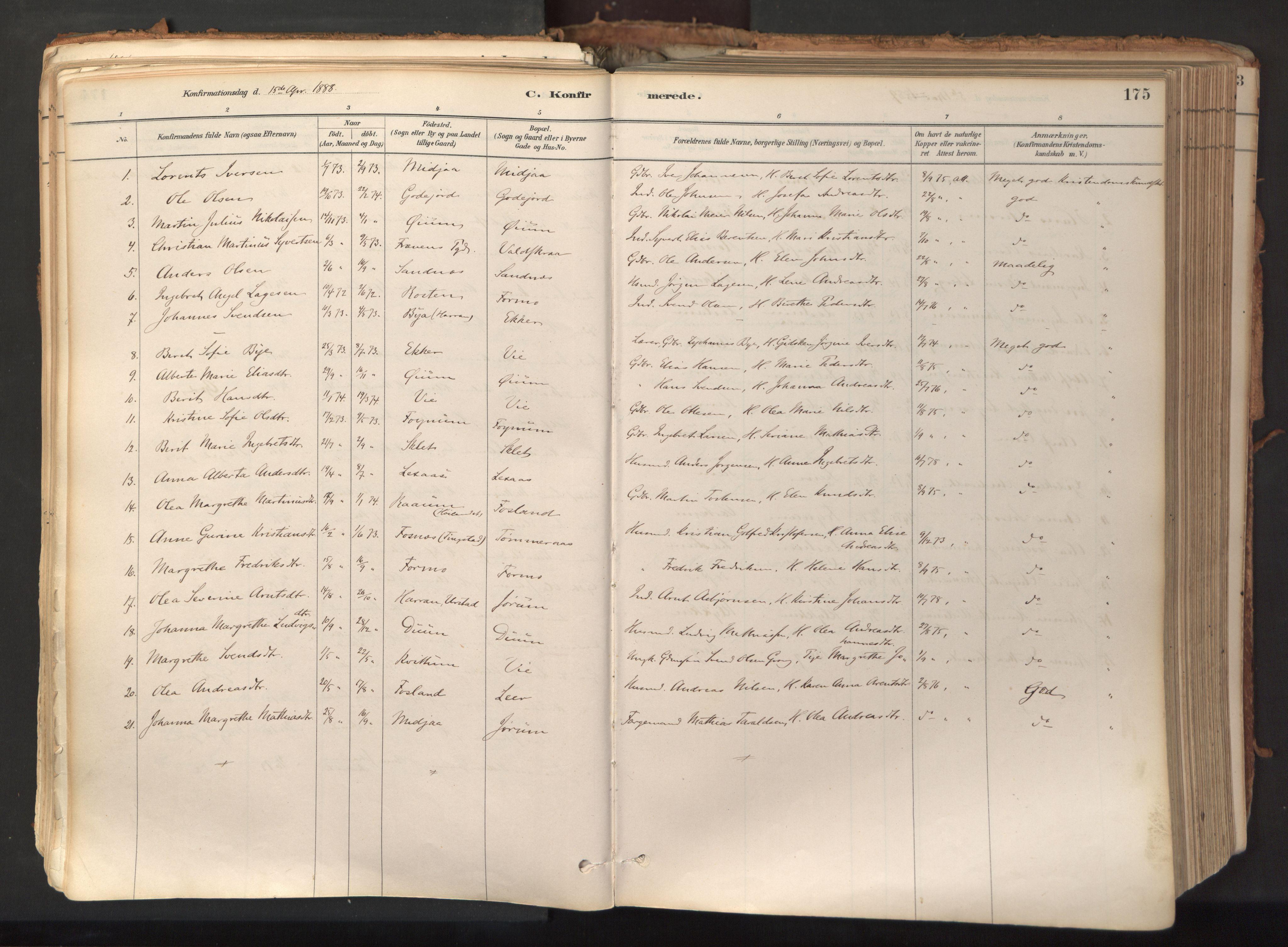 SAT, Ministerialprotokoller, klokkerbøker og fødselsregistre - Nord-Trøndelag, 758/L0519: Ministerialbok nr. 758A04, 1880-1926, s. 175