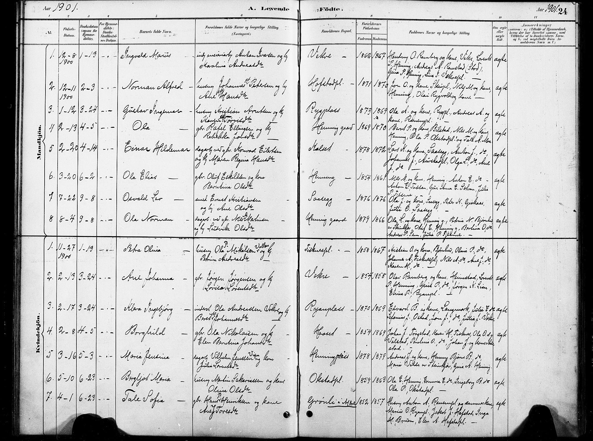SAT, Ministerialprotokoller, klokkerbøker og fødselsregistre - Nord-Trøndelag, 738/L0364: Ministerialbok nr. 738A01, 1884-1902, s. 24