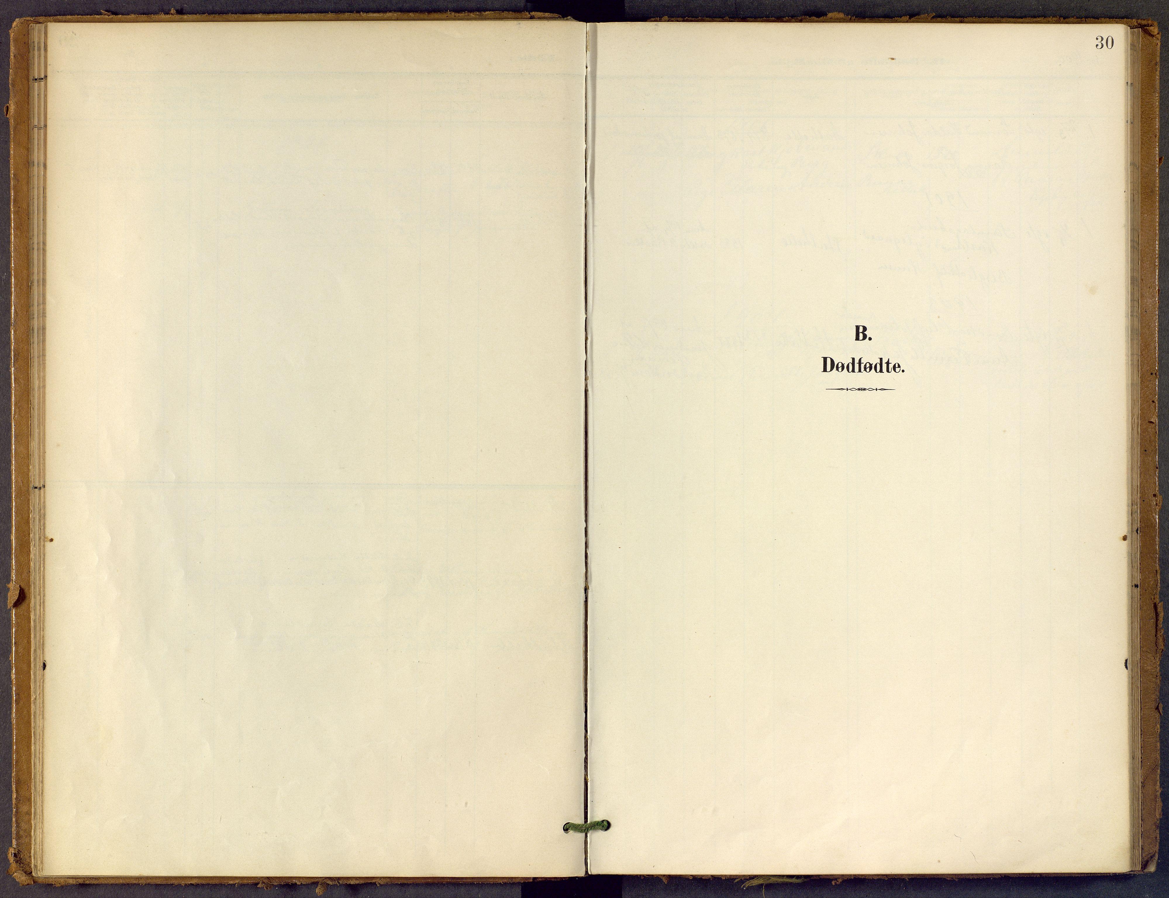 SAKO, Bamble kirkebøker, F/Fb/L0002: Ministerialbok nr. II 2, 1900-1921, s. 30