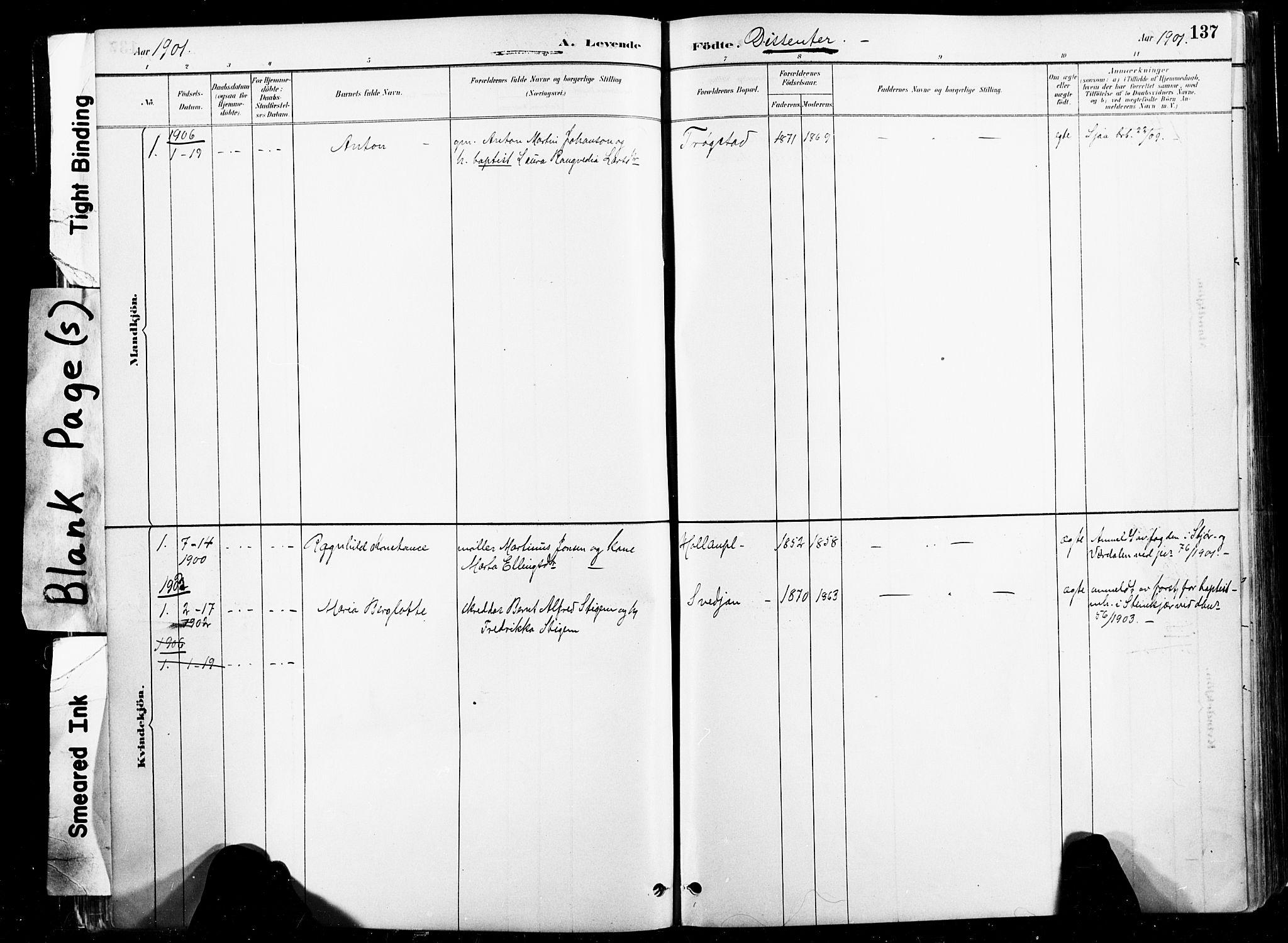 SAT, Ministerialprotokoller, klokkerbøker og fødselsregistre - Nord-Trøndelag, 735/L0351: Ministerialbok nr. 735A10, 1884-1908, s. 137