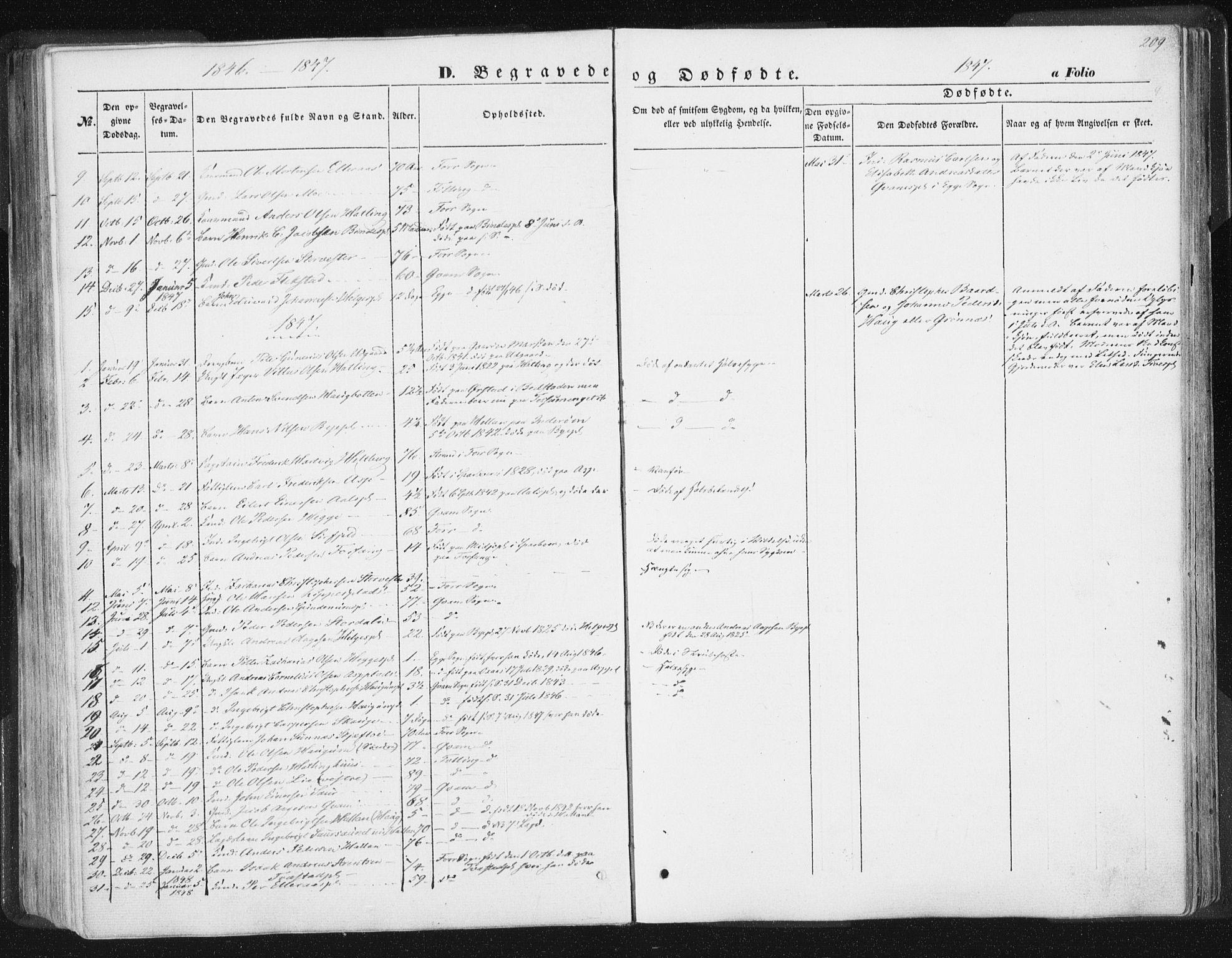 SAT, Ministerialprotokoller, klokkerbøker og fødselsregistre - Nord-Trøndelag, 746/L0446: Ministerialbok nr. 746A05, 1846-1859, s. 209