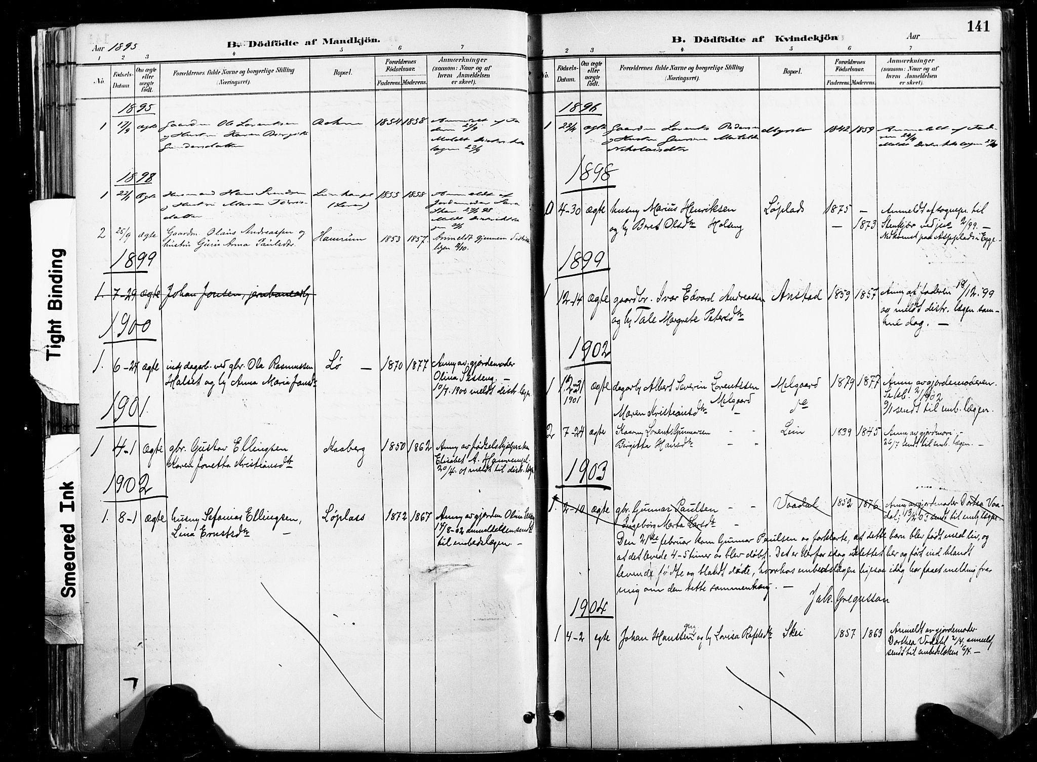 SAT, Ministerialprotokoller, klokkerbøker og fødselsregistre - Nord-Trøndelag, 735/L0351: Ministerialbok nr. 735A10, 1884-1908, s. 141