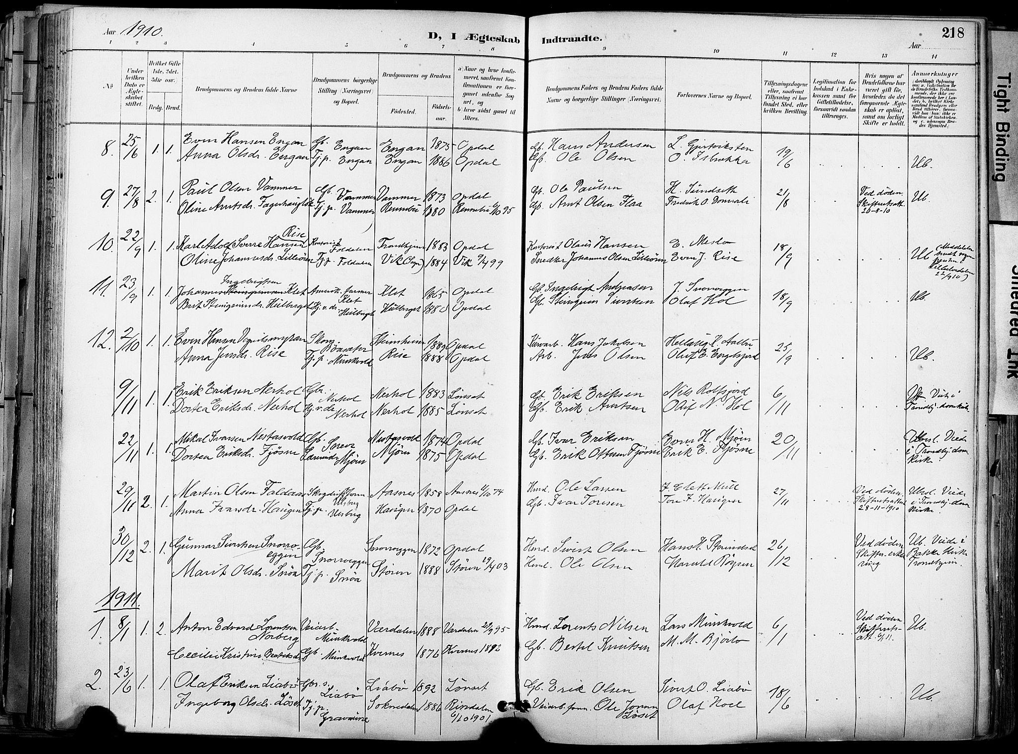 SAT, Ministerialprotokoller, klokkerbøker og fødselsregistre - Sør-Trøndelag, 678/L0902: Ministerialbok nr. 678A11, 1895-1911, s. 218