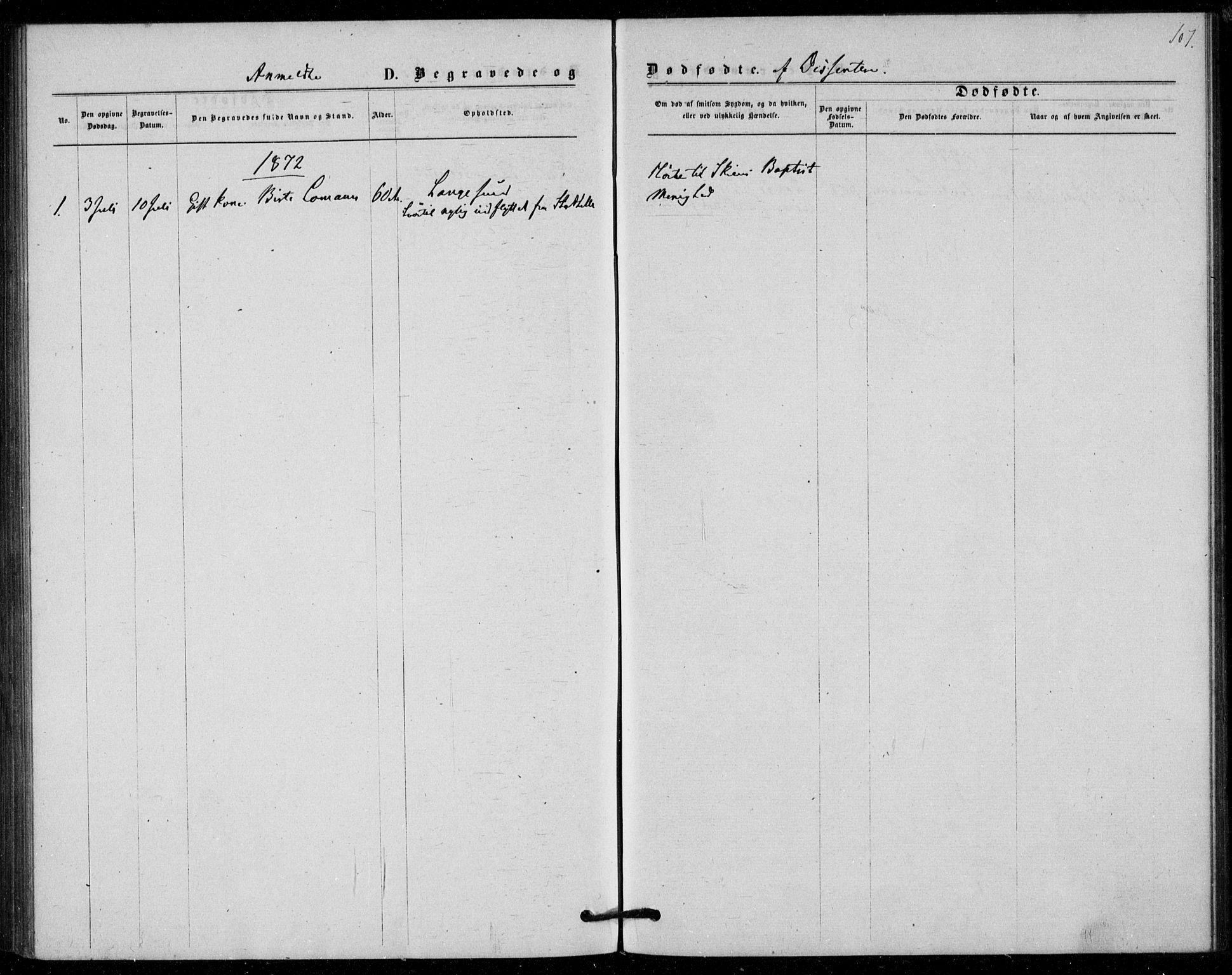 SAKO, Langesund kirkebøker, F/Fa/L0001: Ministerialbok nr. 1, 1870-1877, s. 107