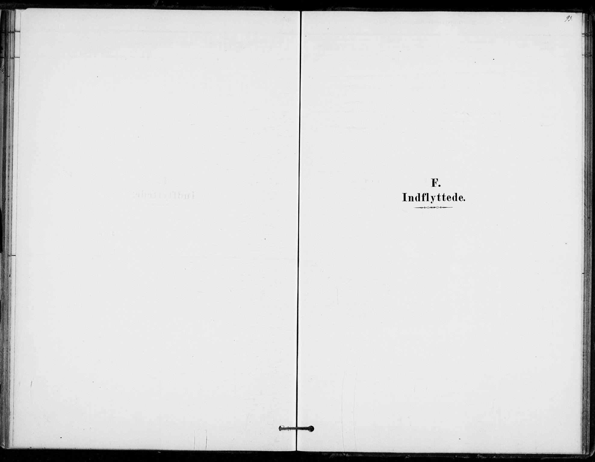 SAKO, Hof kirkebøker, F/Fb/L0001: Ministerialbok nr. II 1, 1878-1907, s. 93
