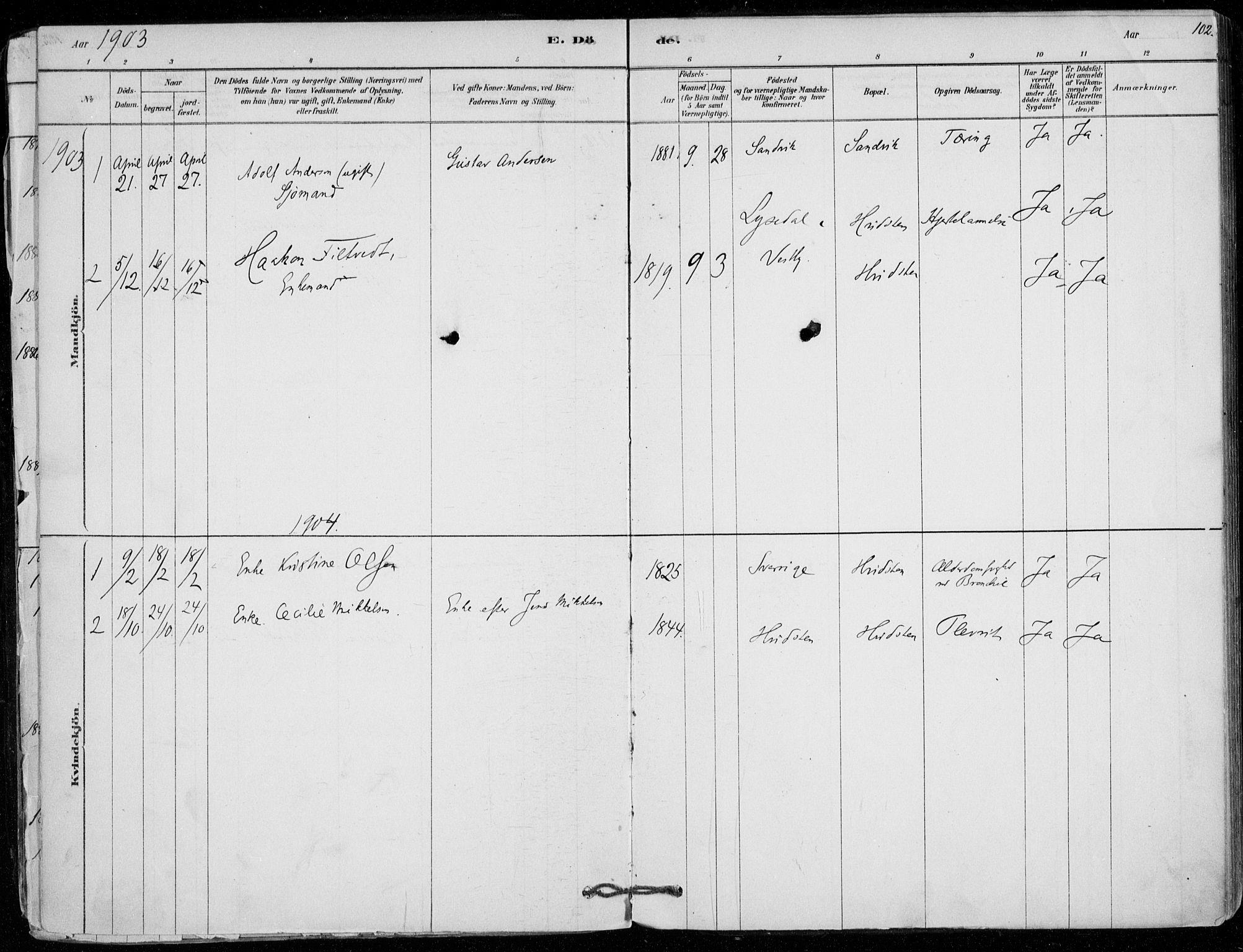 SAO, Vestby prestekontor Kirkebøker, F/Fd/L0001: Ministerialbok nr. IV 1, 1878-1945, s. 102