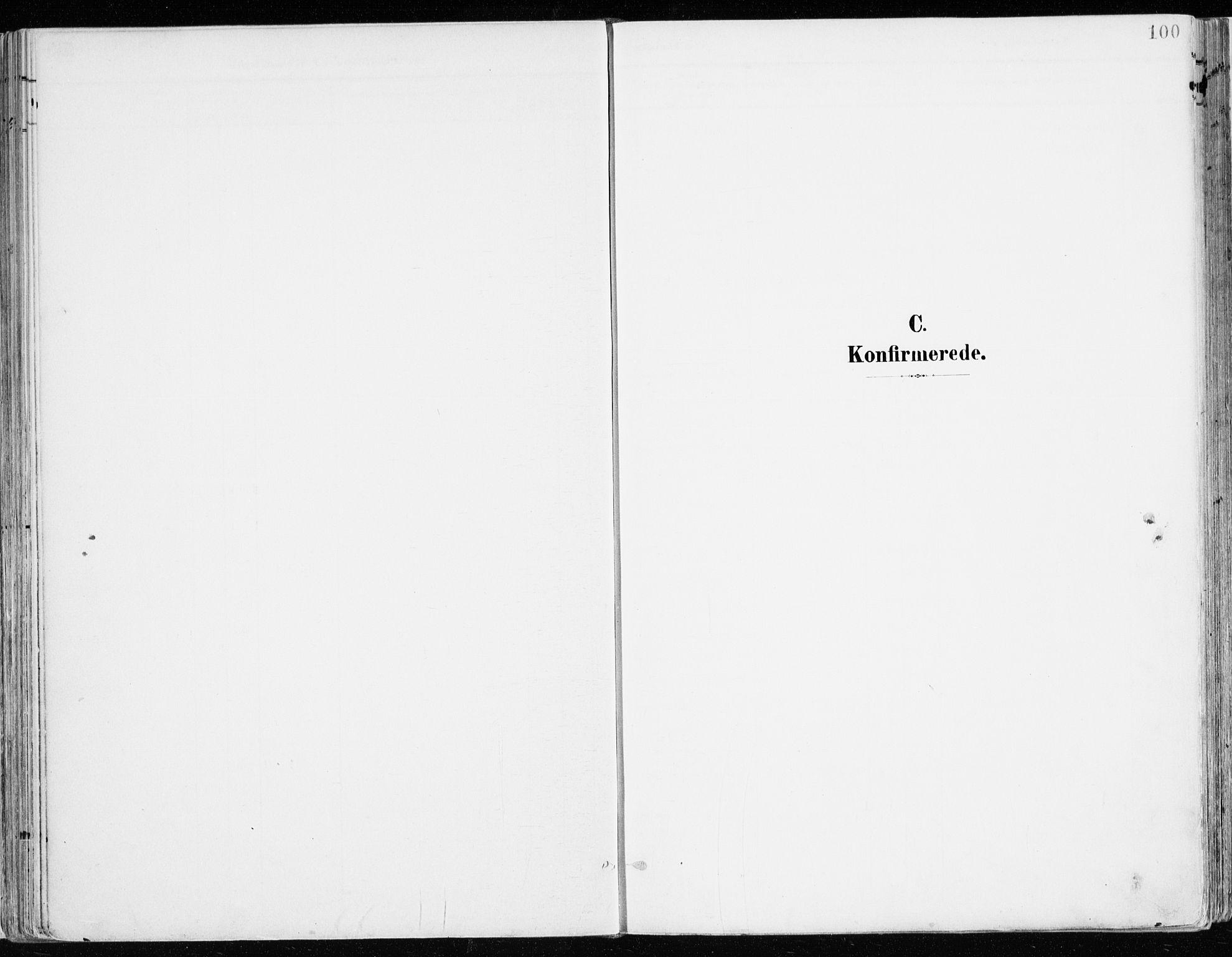 SAH, Nord-Odal prestekontor, Ministerialbok nr. 9, 1902-1926, s. 100