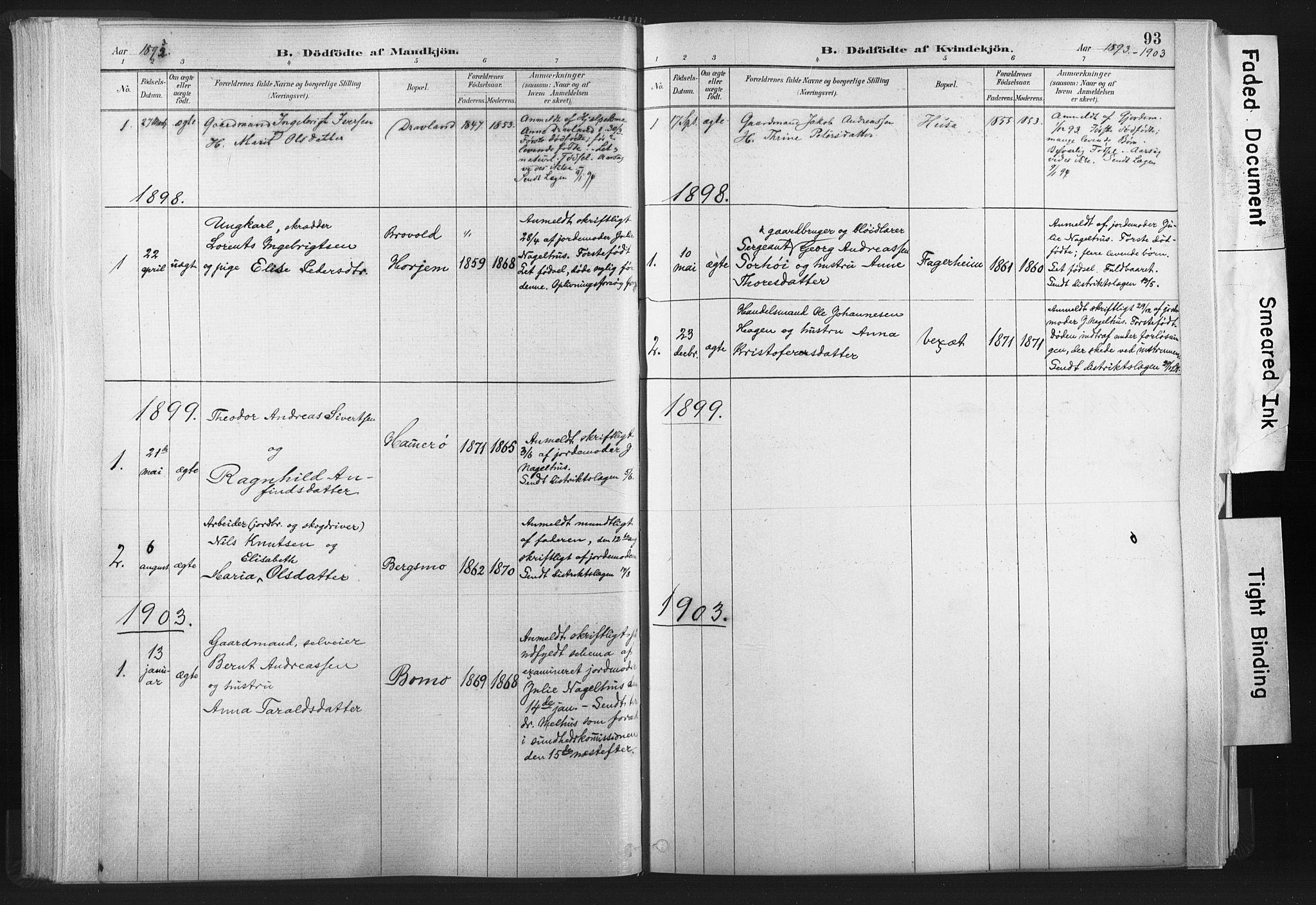 SAT, Ministerialprotokoller, klokkerbøker og fødselsregistre - Nord-Trøndelag, 749/L0474: Ministerialbok nr. 749A08, 1887-1903, s. 93