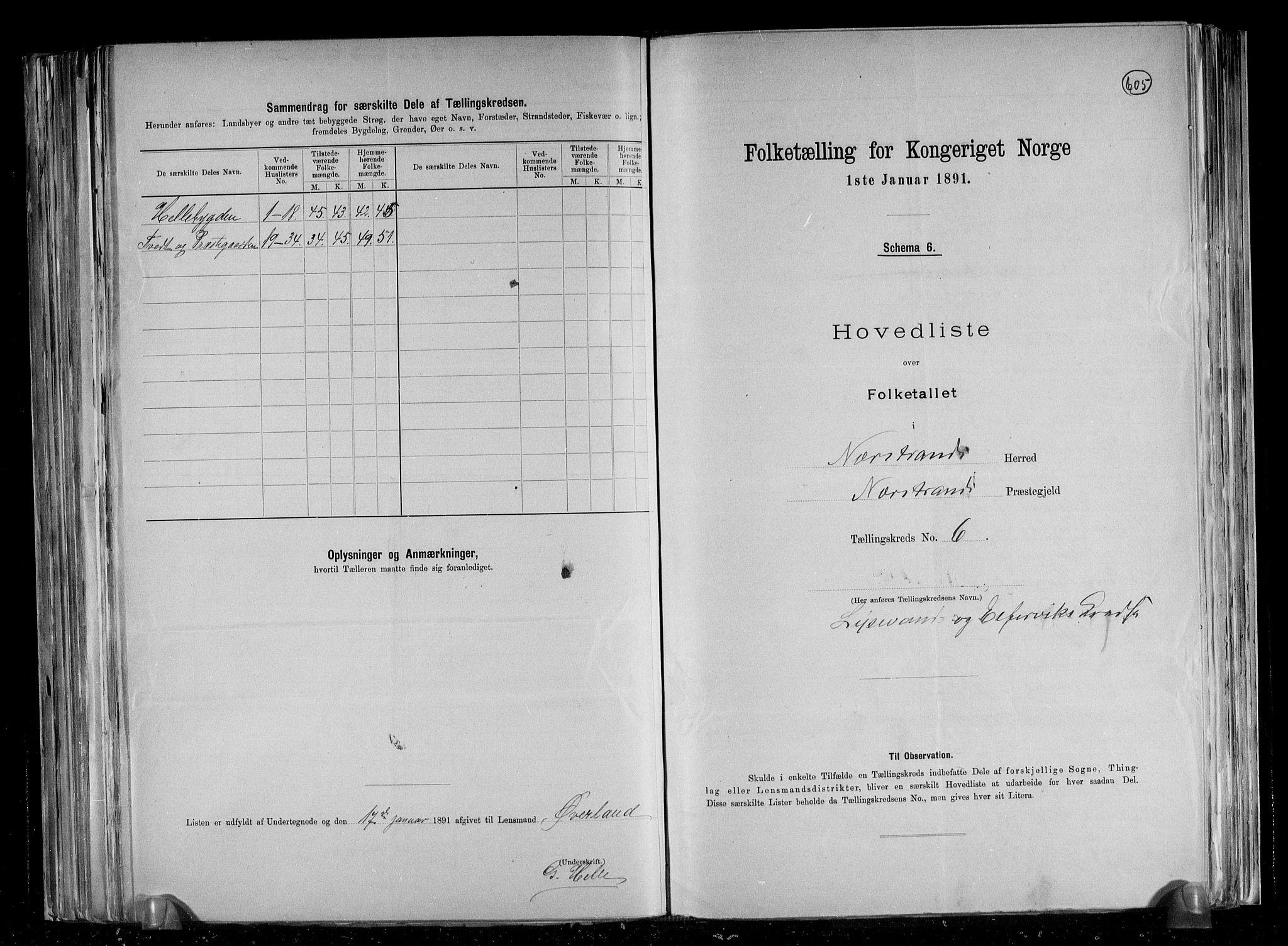 RA, Folketelling 1891 for 1139 Nedstrand herred, 1891, s. 15