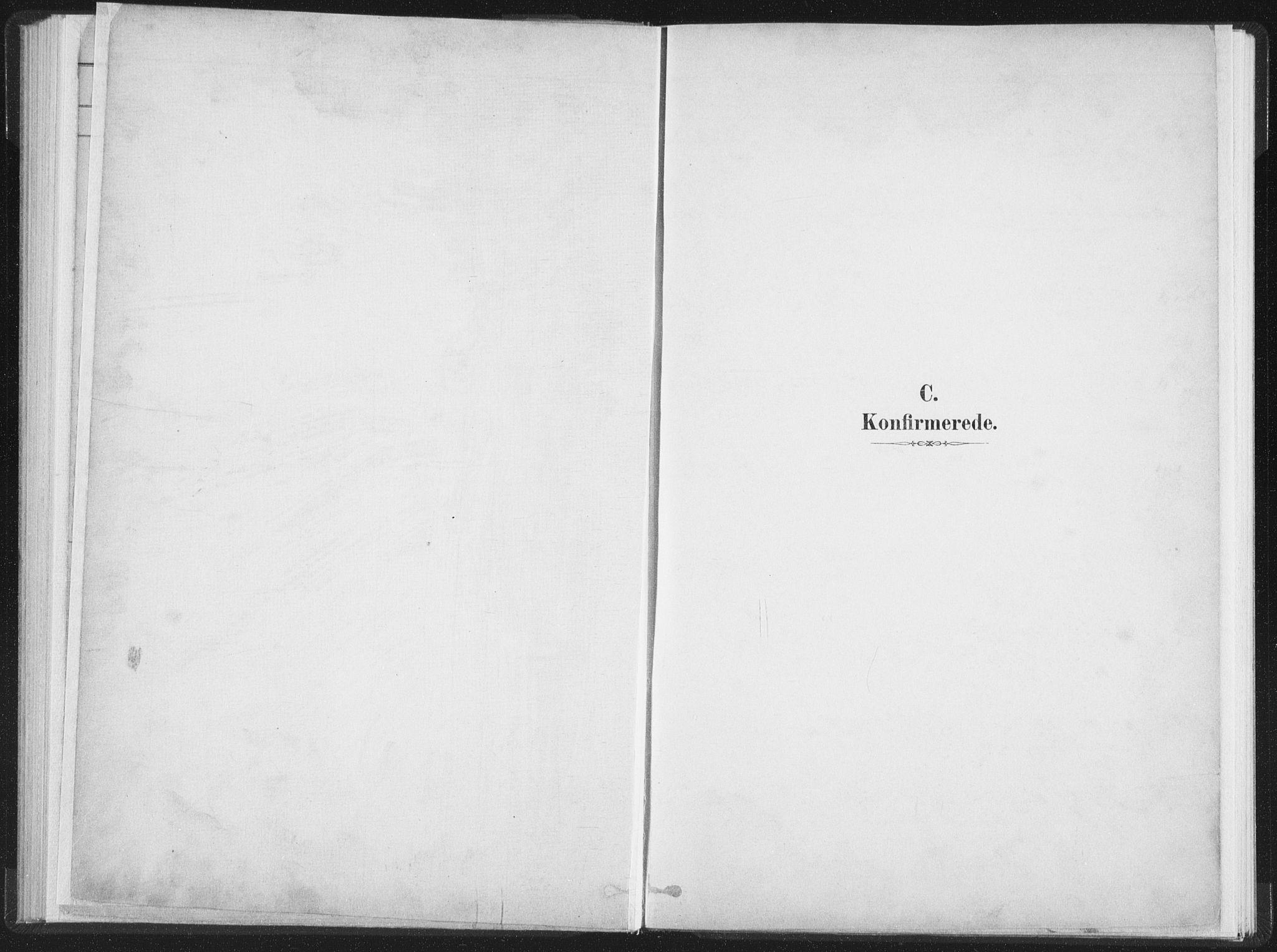 SAT, Ministerialprotokoller, klokkerbøker og fødselsregistre - Nordland, 890/L1286: Ministerialbok nr. 890A01, 1882-1902