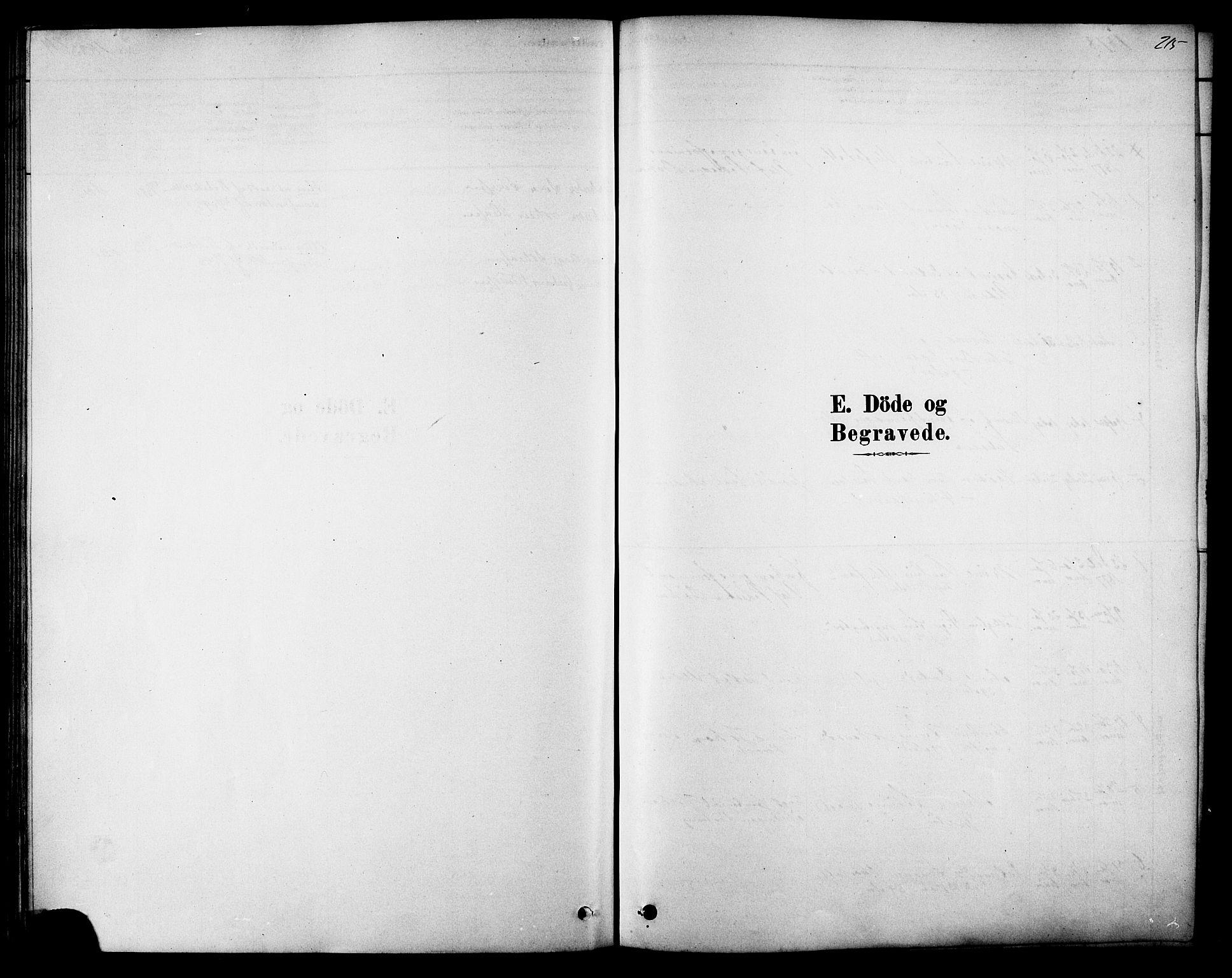 SAT, Ministerialprotokoller, klokkerbøker og fødselsregistre - Sør-Trøndelag, 616/L0410: Ministerialbok nr. 616A07, 1878-1893, s. 215