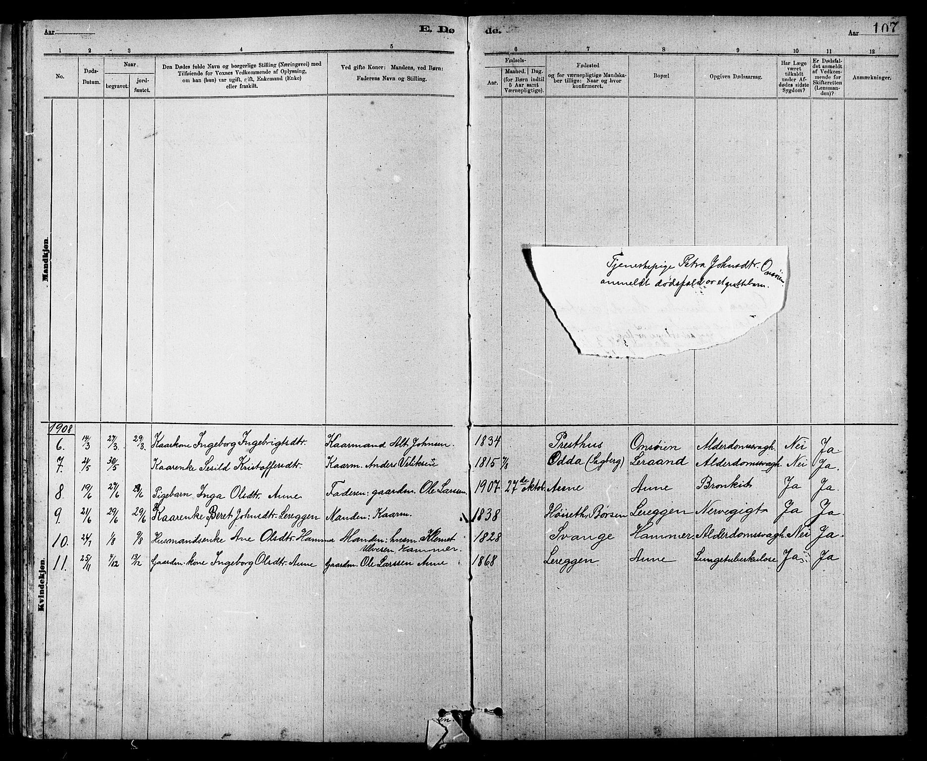 SAT, Ministerialprotokoller, klokkerbøker og fødselsregistre - Sør-Trøndelag, 666/L0790: Klokkerbok nr. 666C03, 1885-1908, s. 107