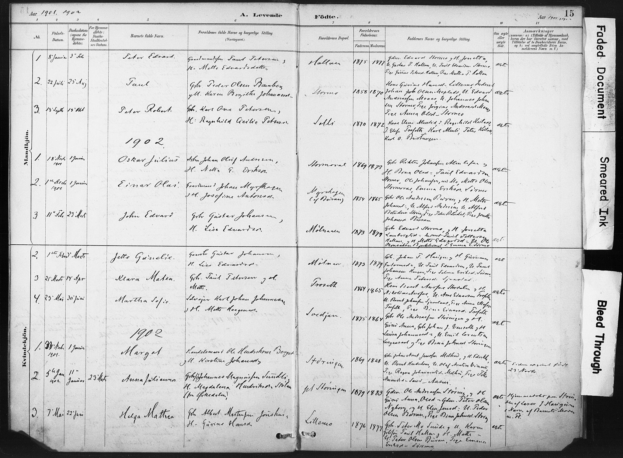 SAT, Ministerialprotokoller, klokkerbøker og fødselsregistre - Nord-Trøndelag, 718/L0175: Ministerialbok nr. 718A01, 1890-1923, s. 15