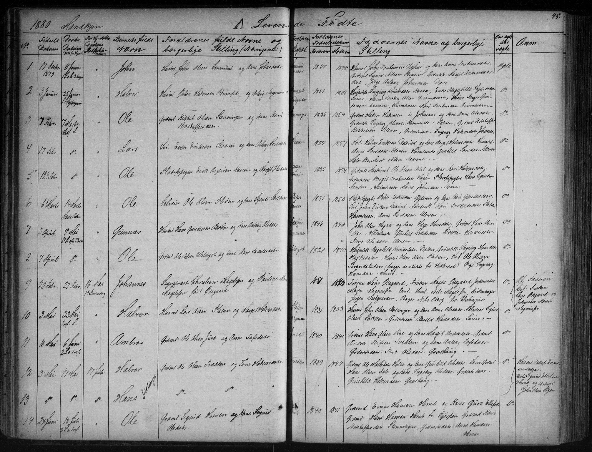 SAKO, Sauherad kirkebøker, G/Ga/L0003: Klokkerbok nr. I 3, 1866-1905, s. 45