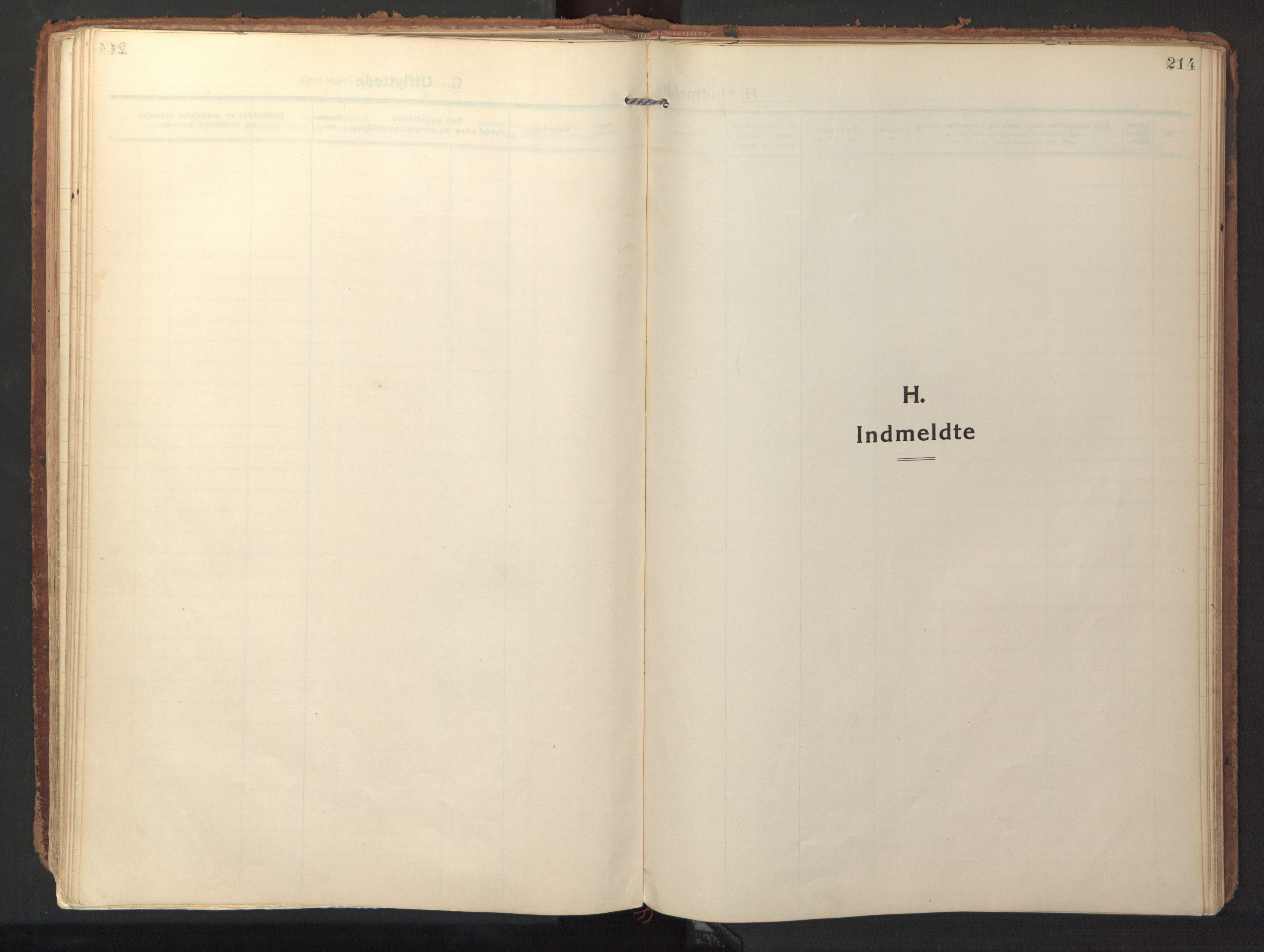 SAT, Ministerialprotokoller, klokkerbøker og fødselsregistre - Sør-Trøndelag, 640/L0581: Ministerialbok nr. 640A06, 1910-1924, s. 214