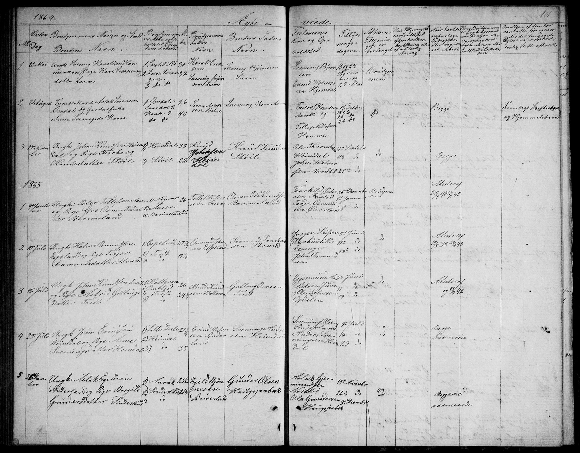 SAKO, Nissedal kirkebøker, G/Gb/L0002: Klokkerbok nr. II 2, 1863-1892, s. 101
