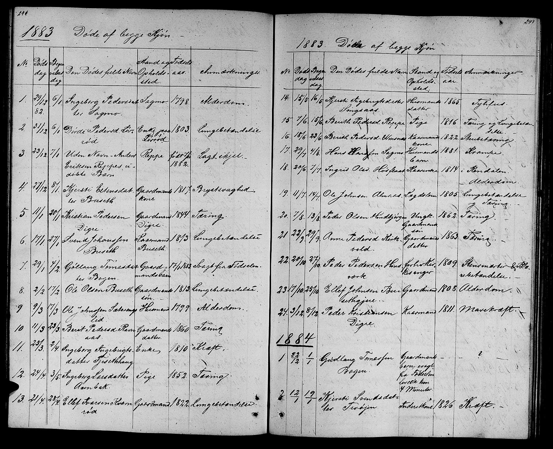 SAT, Ministerialprotokoller, klokkerbøker og fødselsregistre - Sør-Trøndelag, 688/L1027: Klokkerbok nr. 688C02, 1861-1889, s. 246-247