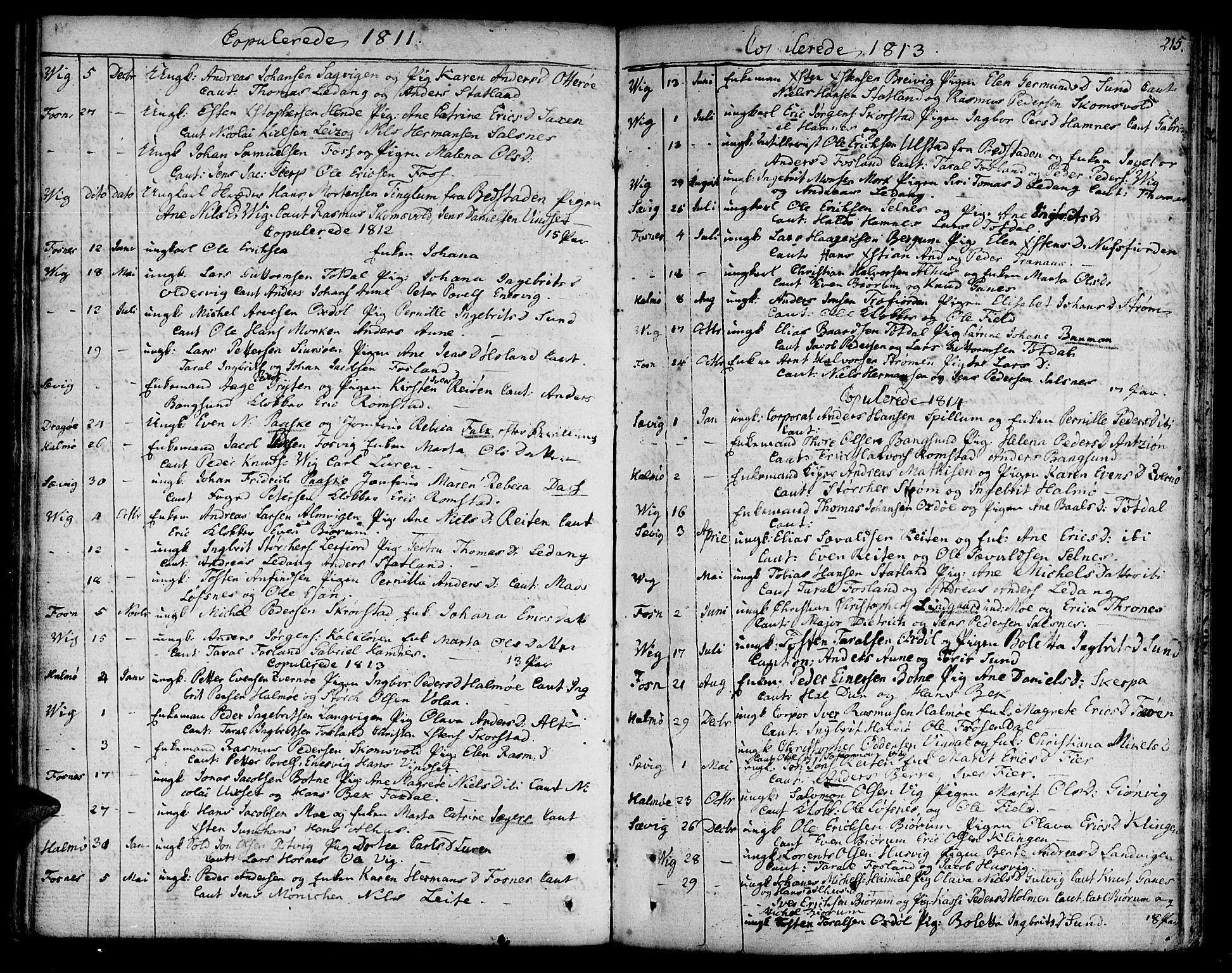 SAT, Ministerialprotokoller, klokkerbøker og fødselsregistre - Nord-Trøndelag, 773/L0608: Ministerialbok nr. 773A02, 1784-1816, s. 215