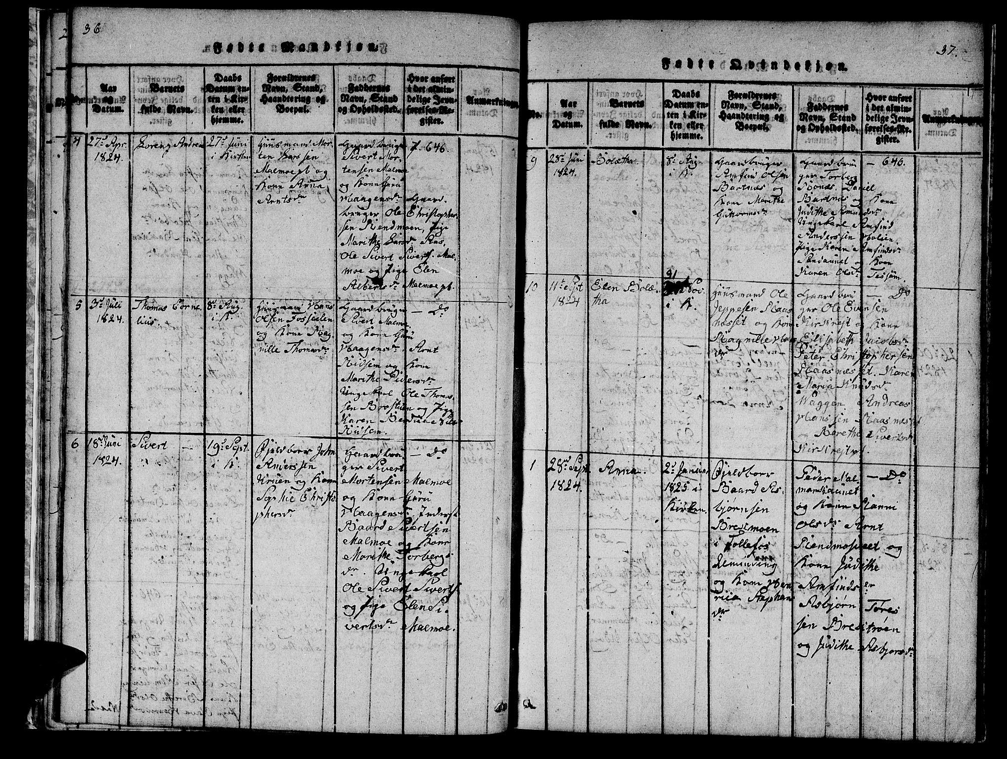 SAT, Ministerialprotokoller, klokkerbøker og fødselsregistre - Nord-Trøndelag, 745/L0433: Klokkerbok nr. 745C02, 1817-1825, s. 36-37