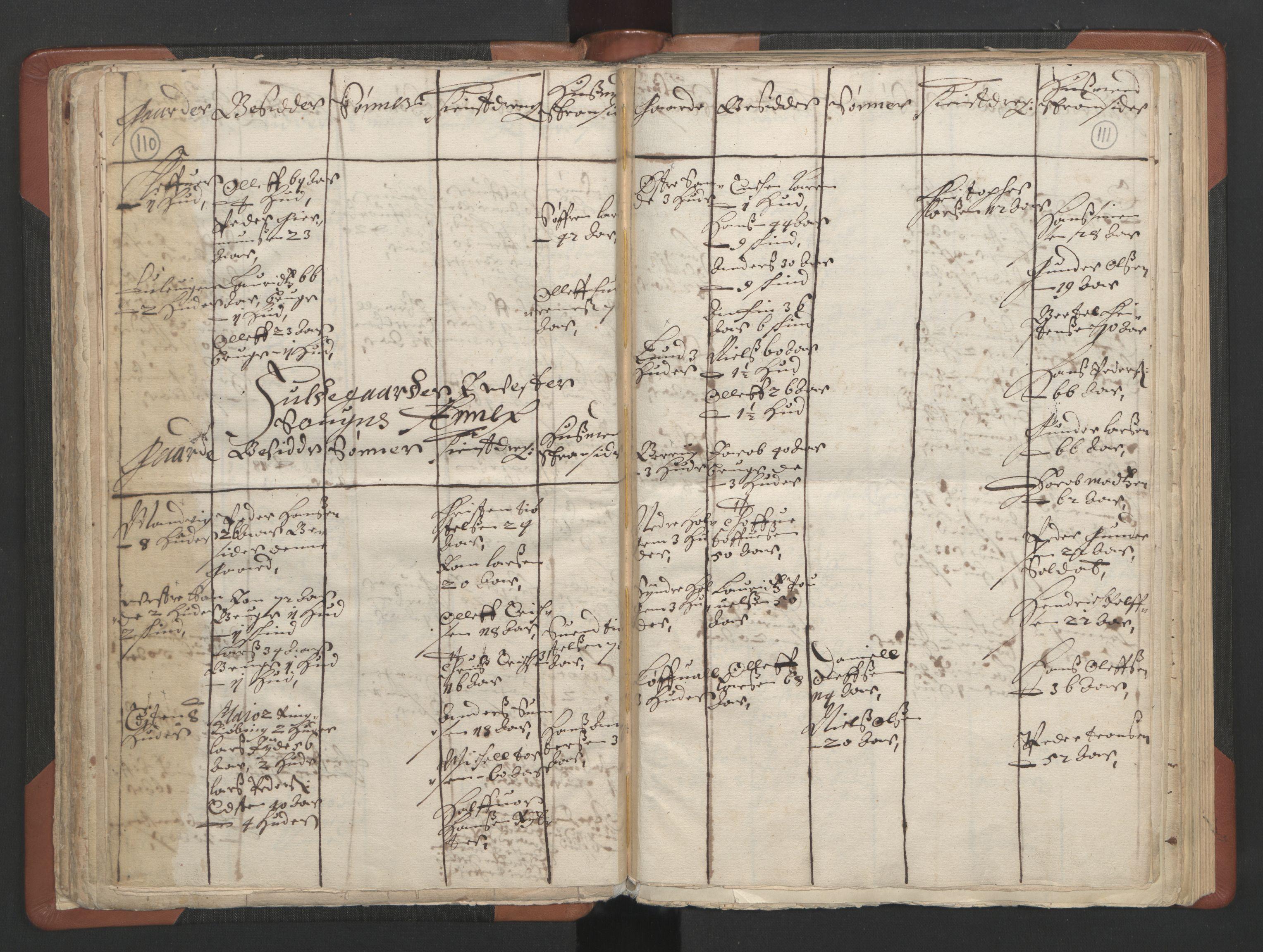 RA, Sogneprestenes manntall 1664-1666, nr. 11: Brunlanes prosti, 1664-1666, s. 110-111