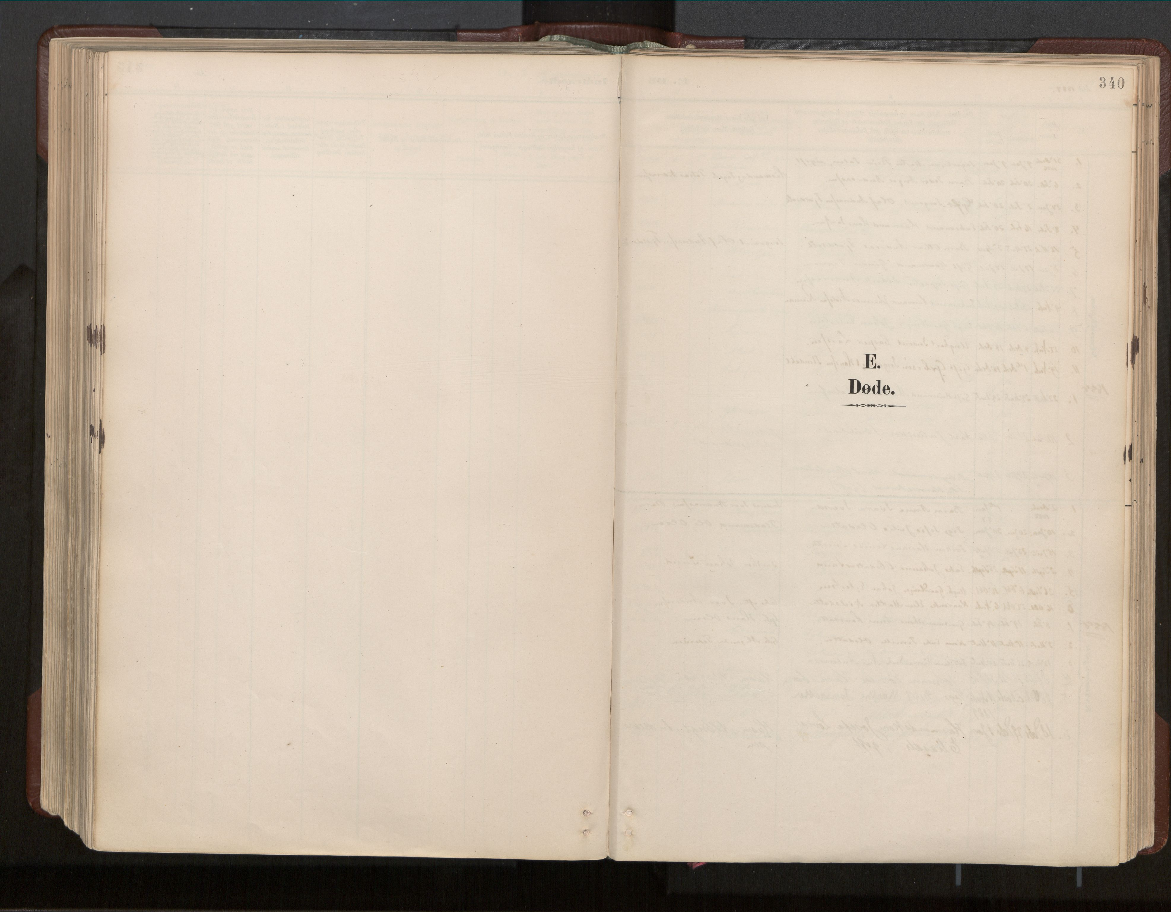 SAT, Ministerialprotokoller, klokkerbøker og fødselsregistre - Nord-Trøndelag, 770/L0589: Ministerialbok nr. 770A03, 1887-1929, s. 340