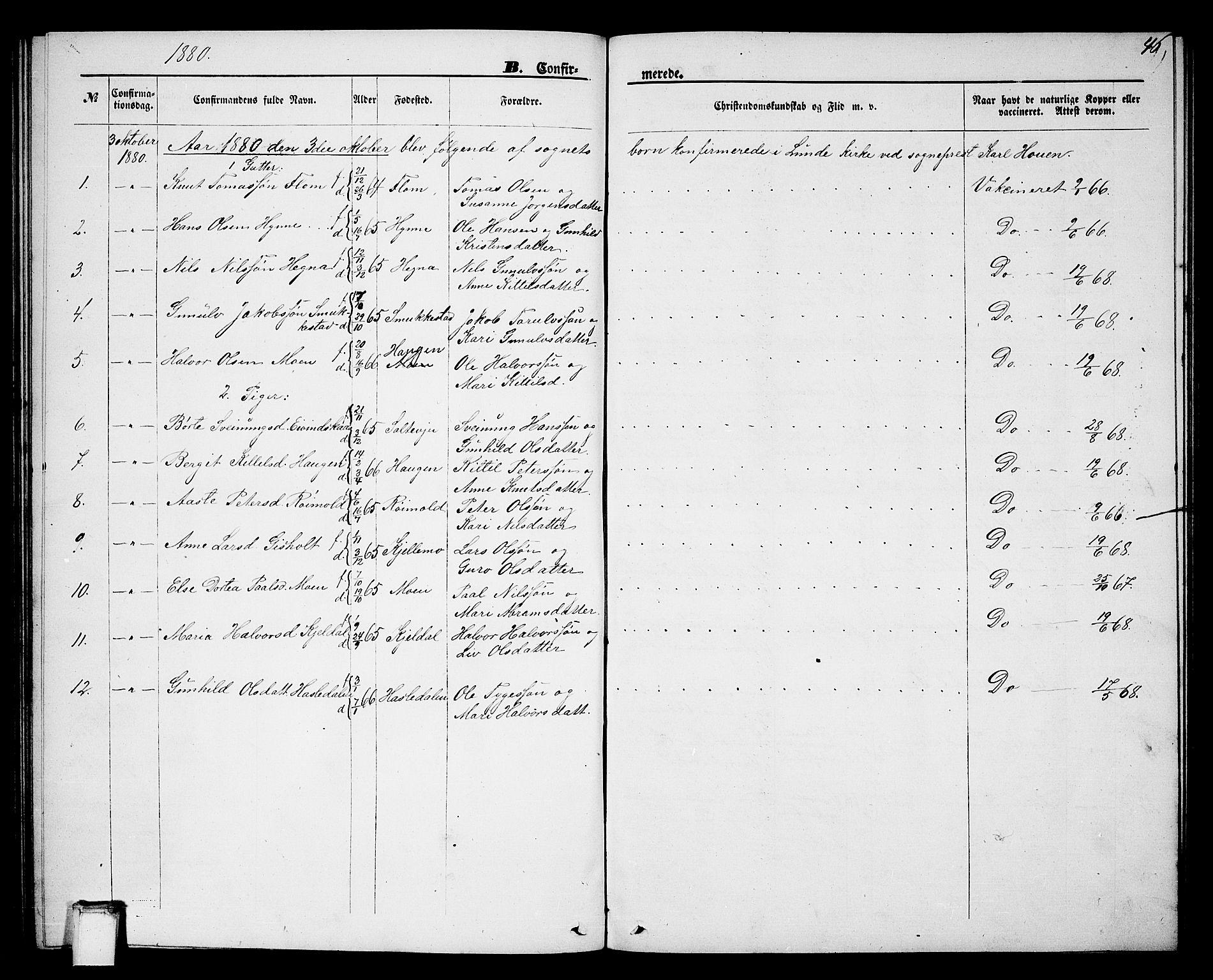 SAKO, Lunde kirkebøker, G/Gb/L0001: Klokkerbok nr. II 1, 1866-1887, s. 46