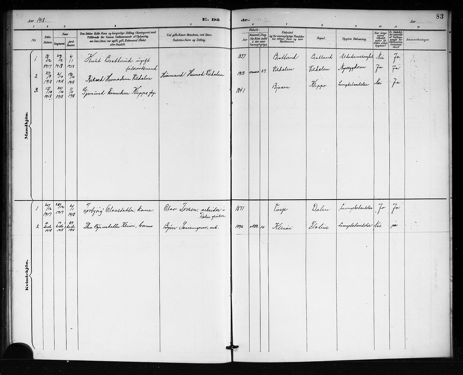 SAKO, Lårdal kirkebøker, G/Gb/L0003: Klokkerbok nr. II 3, 1889-1920, s. 83