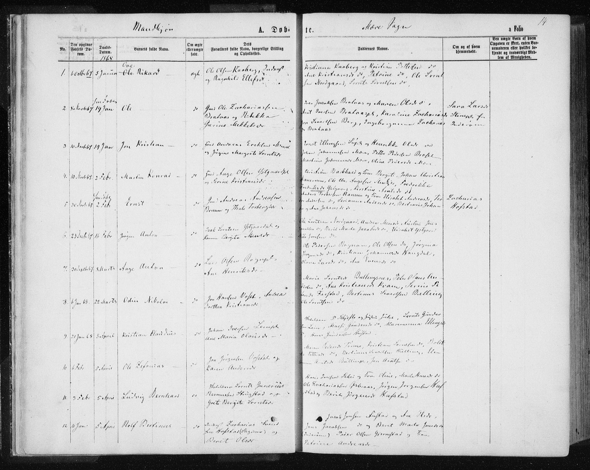 SAT, Ministerialprotokoller, klokkerbøker og fødselsregistre - Nord-Trøndelag, 735/L0345: Ministerialbok nr. 735A08 /1, 1863-1872, s. 14