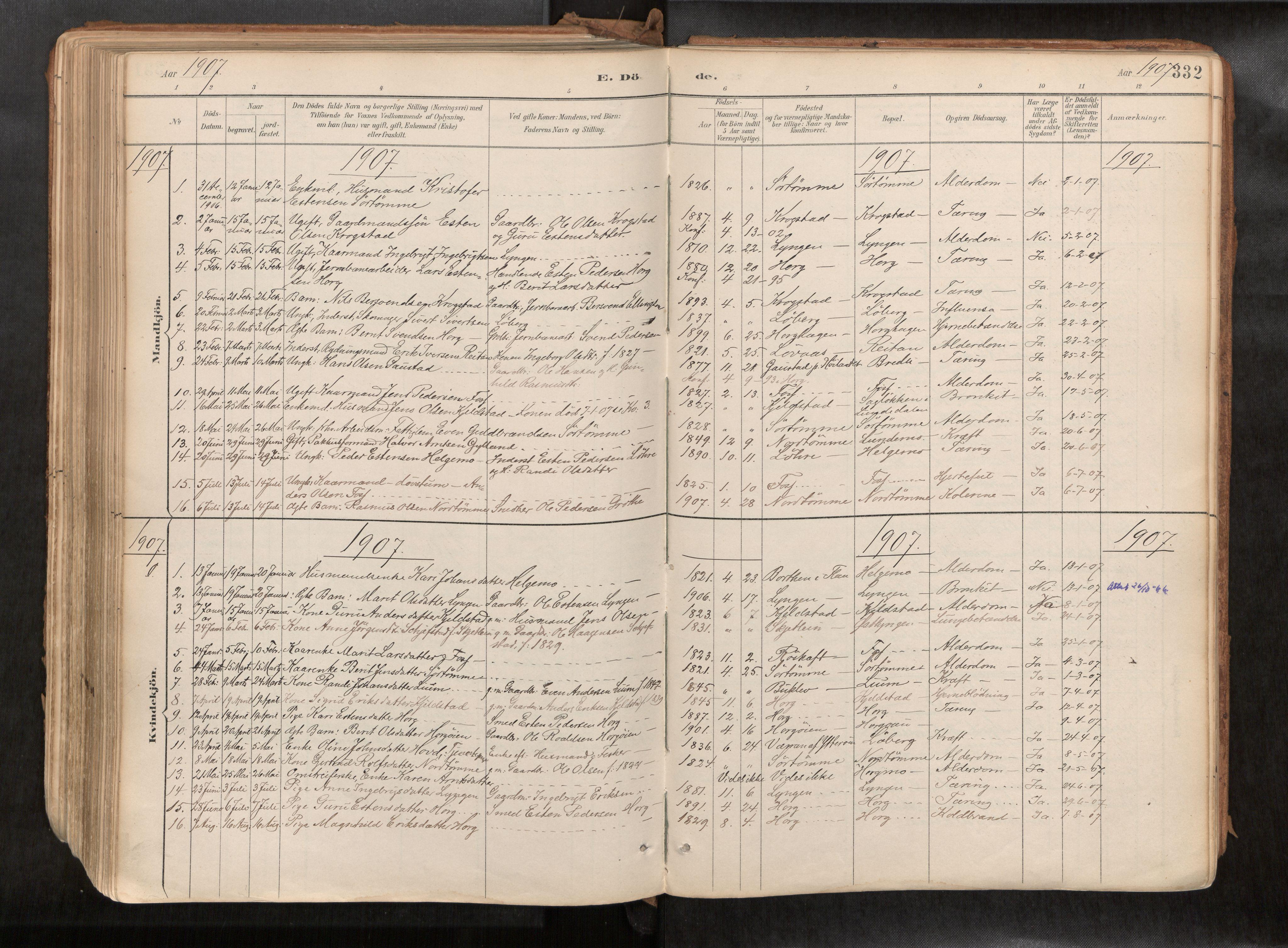 SAT, Ministerialprotokoller, klokkerbøker og fødselsregistre - Sør-Trøndelag, 692/L1105b: Ministerialbok nr. 692A06, 1891-1934, s. 332