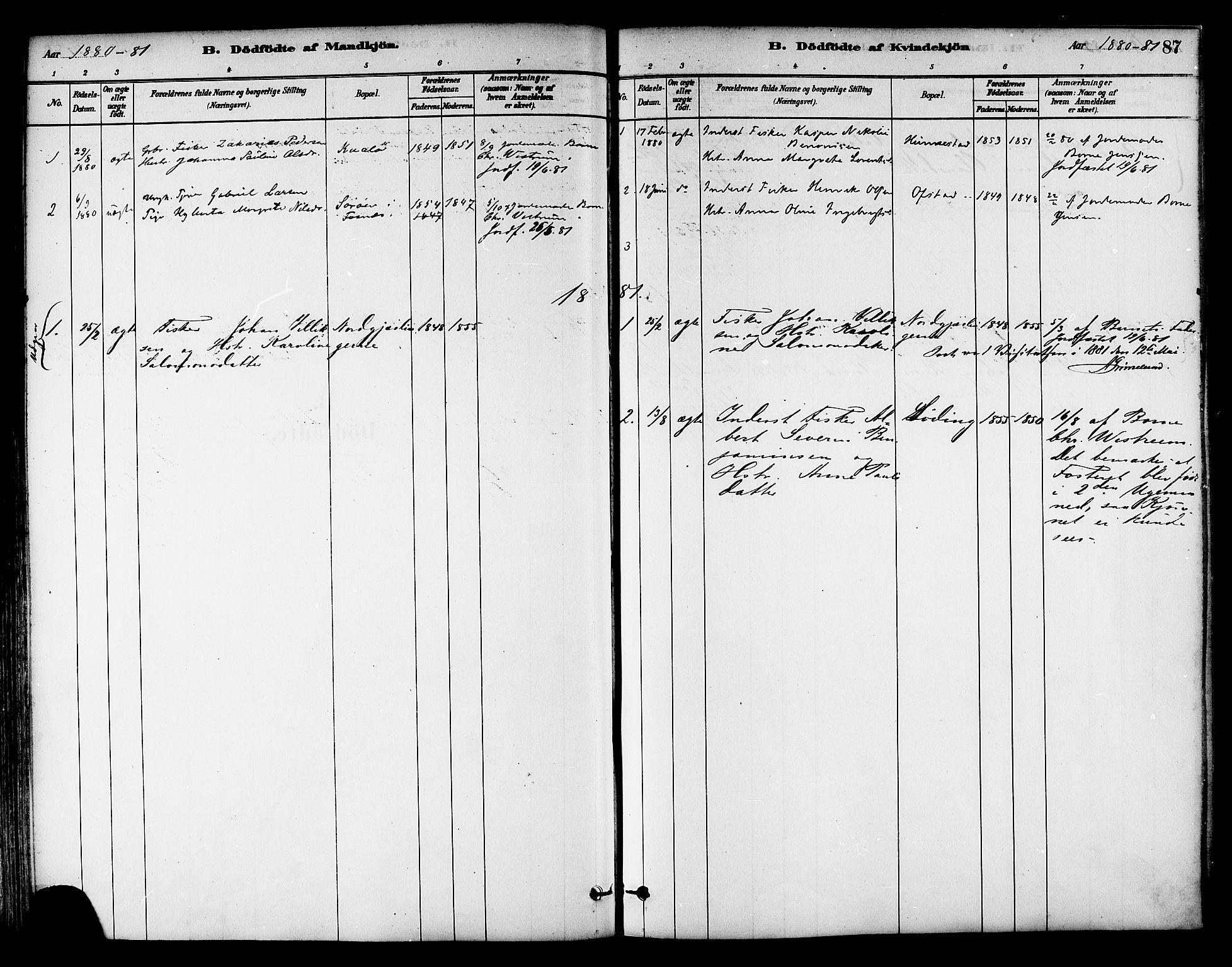 SAT, Ministerialprotokoller, klokkerbøker og fødselsregistre - Nord-Trøndelag, 786/L0686: Ministerialbok nr. 786A02, 1880-1887, s. 87